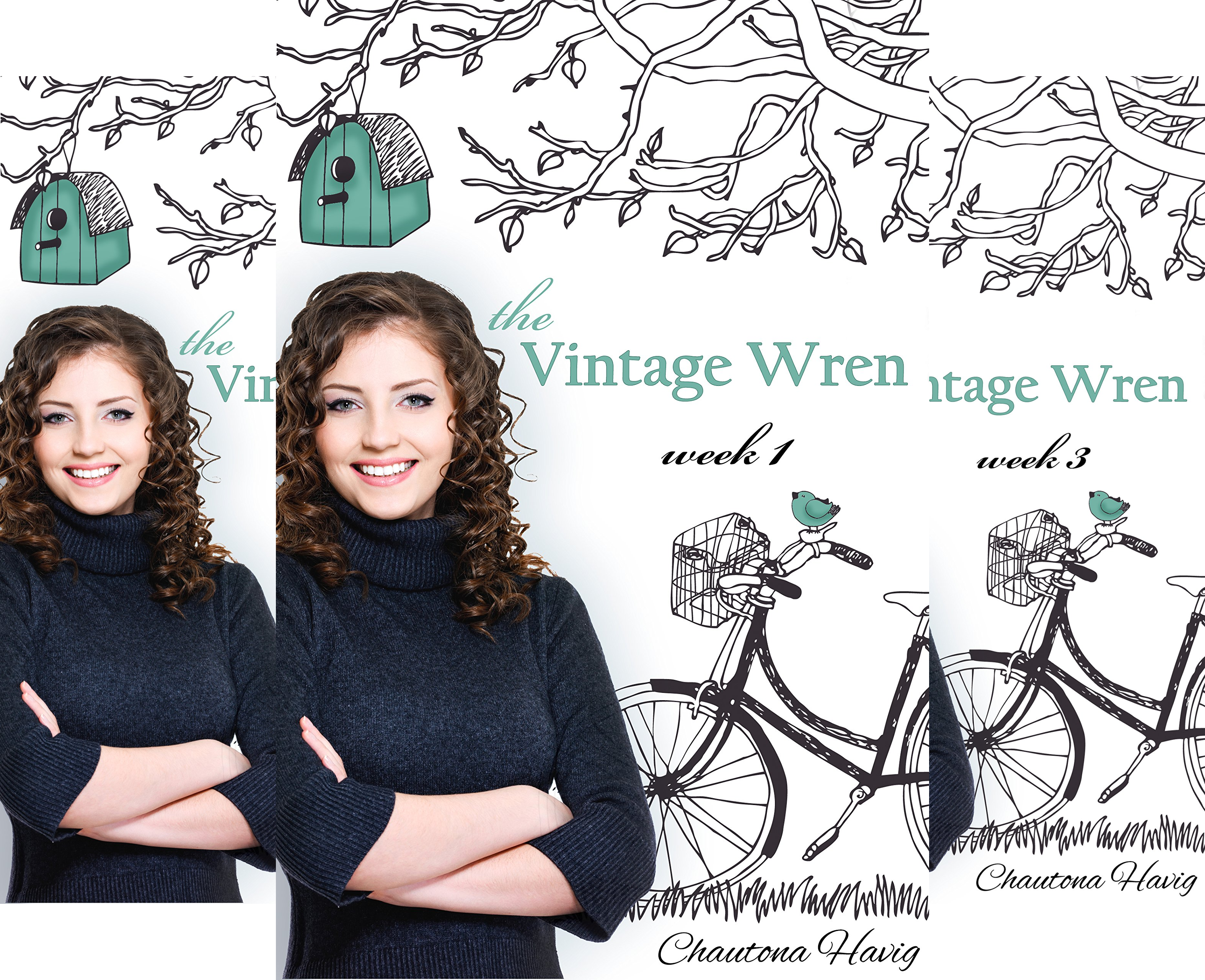 The Vintage Wren (7 Book Series)