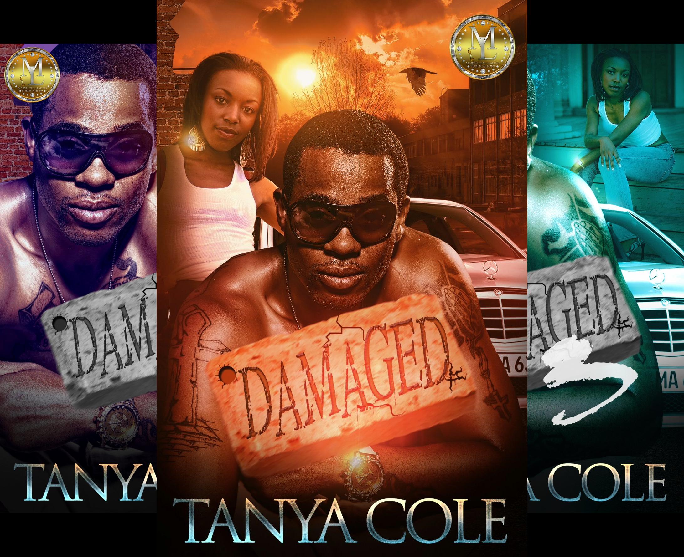 Damaged (4 Book Series)