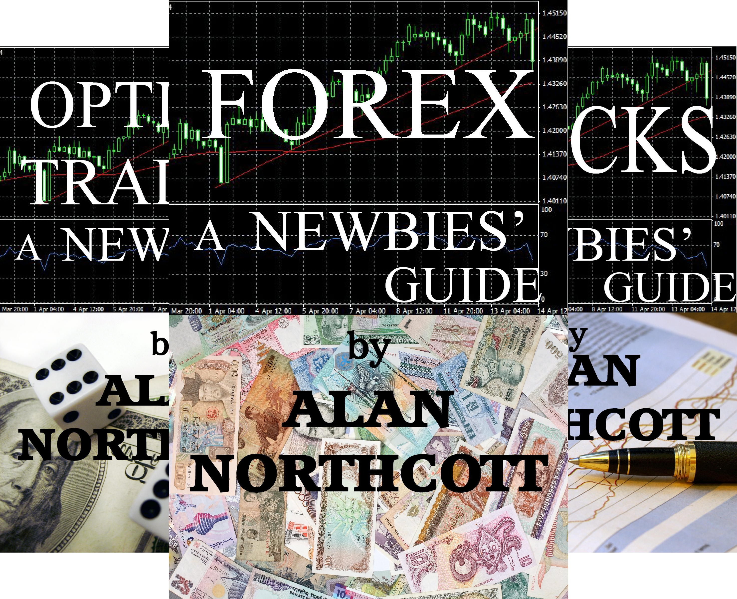 Newbies Guides to Finance (4 Book Series)