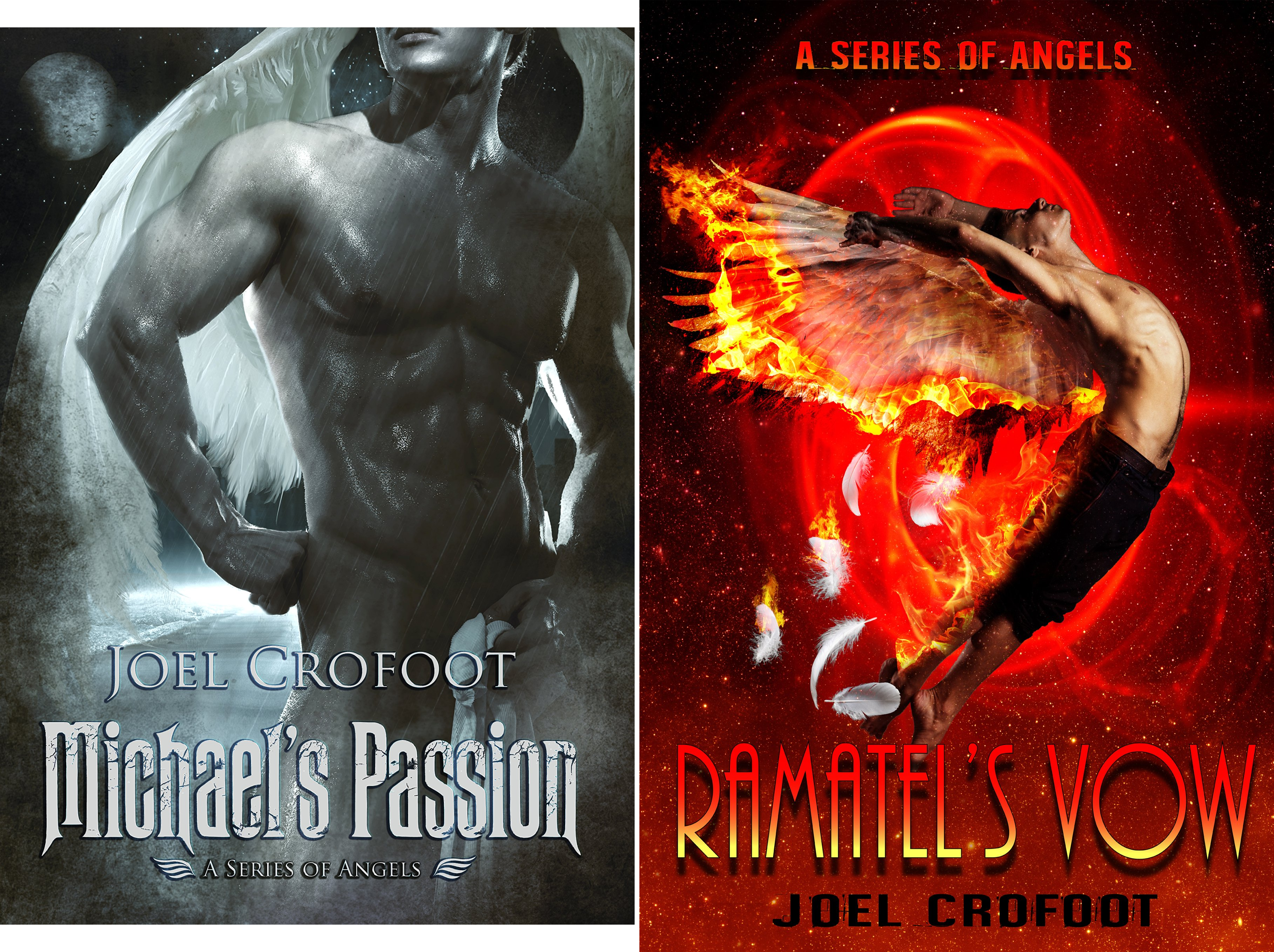 A Series of Angels (2 Book Series)