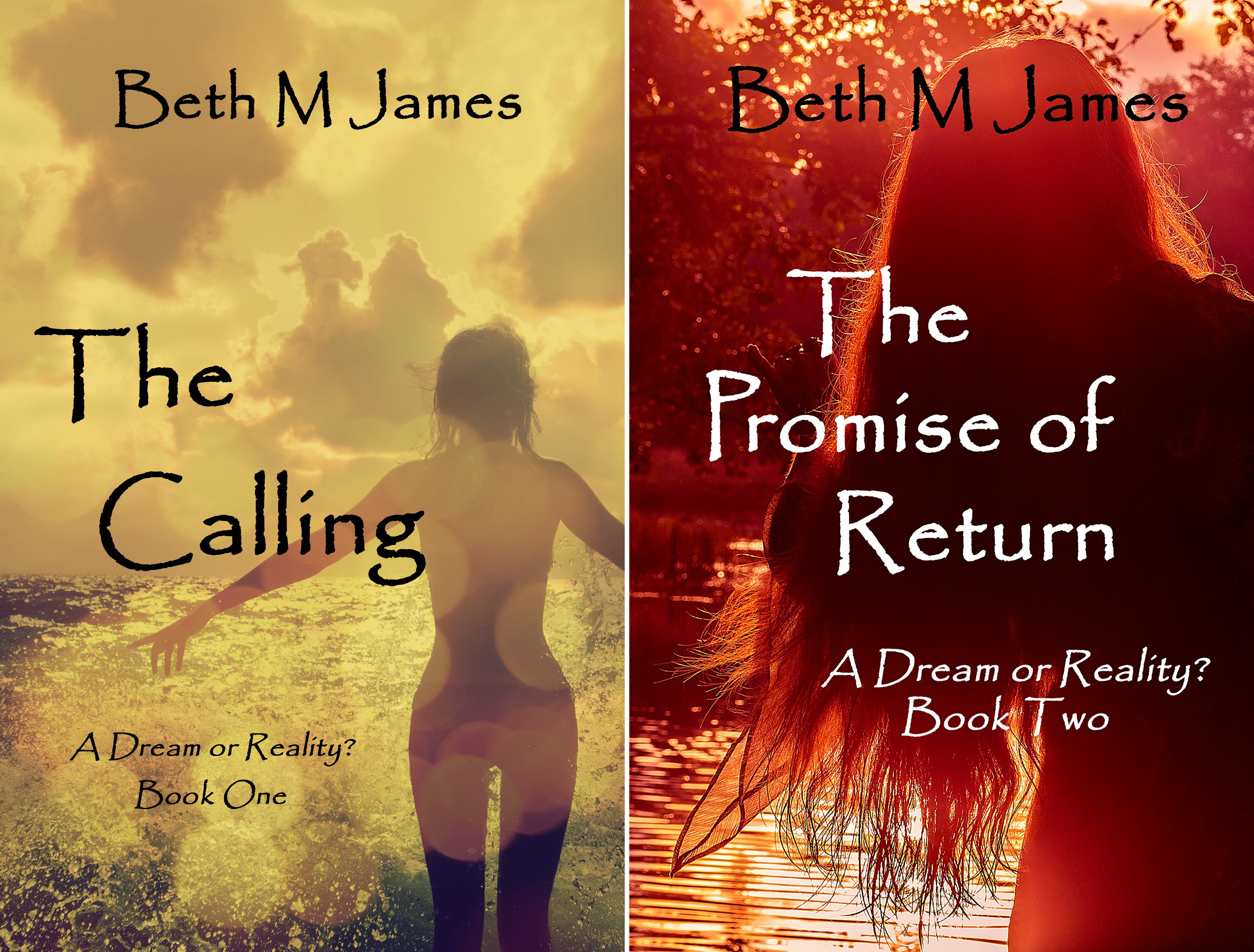 A Dream or Reality (2 Book Series)