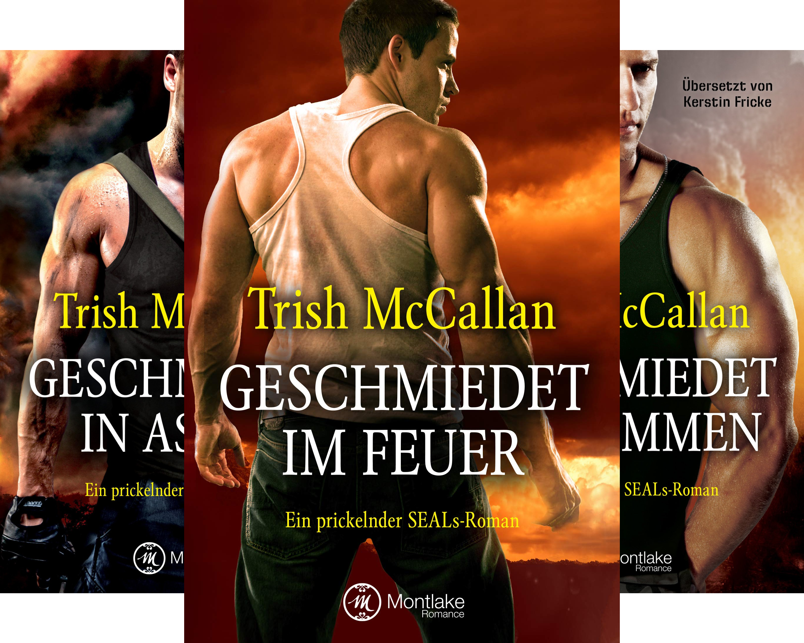 Ein prickelnder SEALs-Roman (Reihe in 4 Bänden)