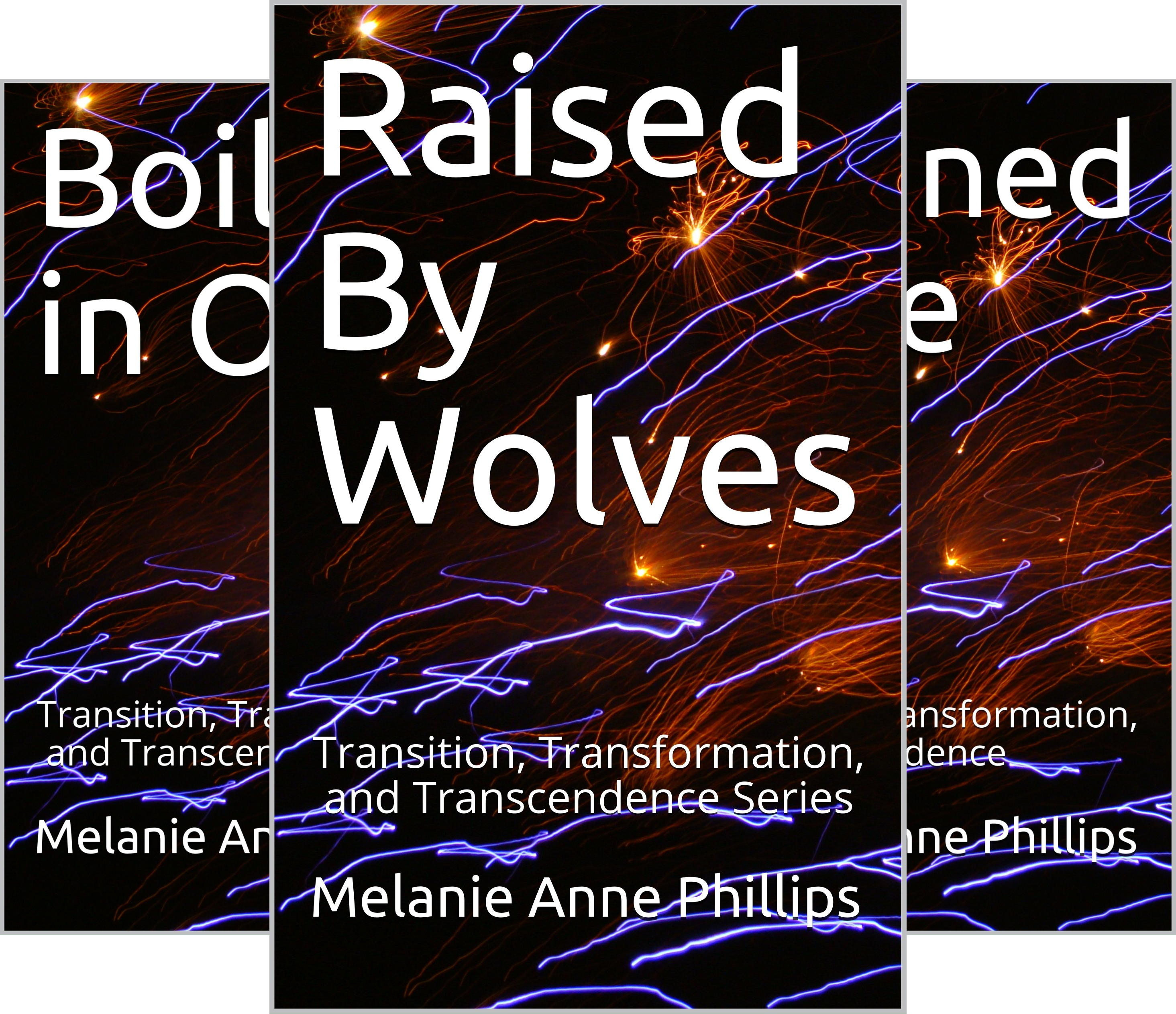Transition, Transformation, and Transcendence (8 Book Series)