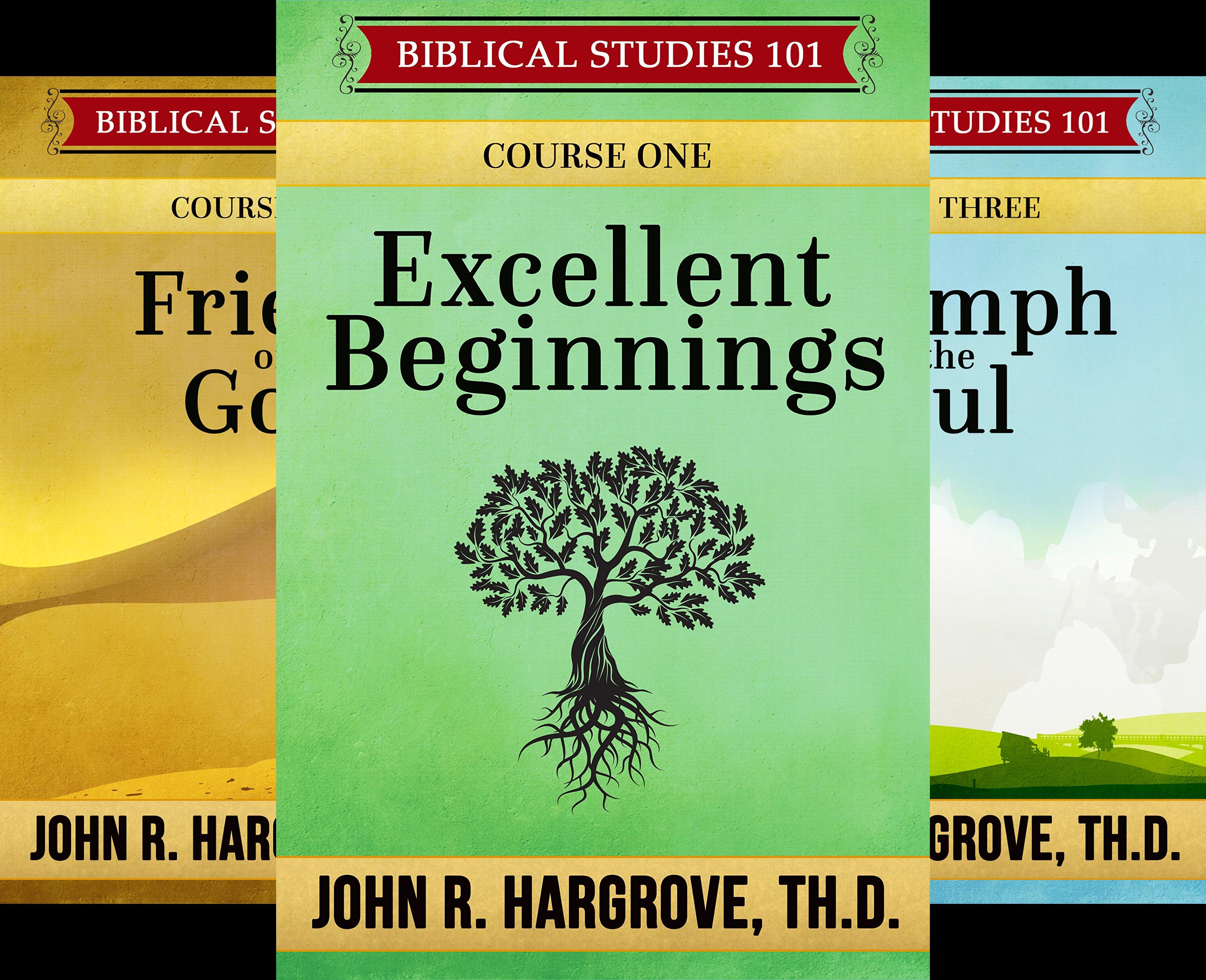 Biblical Studies 101 (12 Book Series)