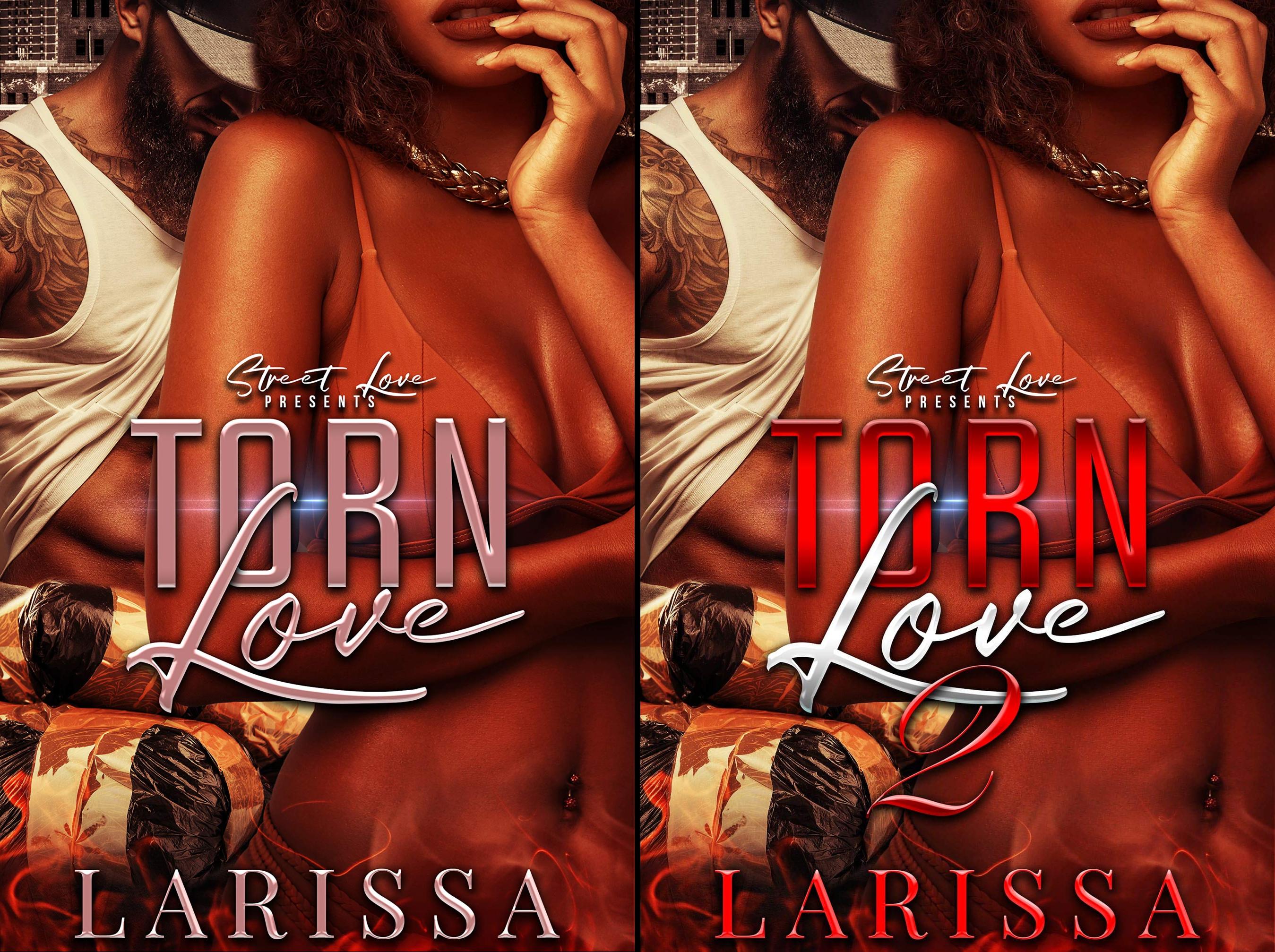 Torn Love Series (2 Book Series)
