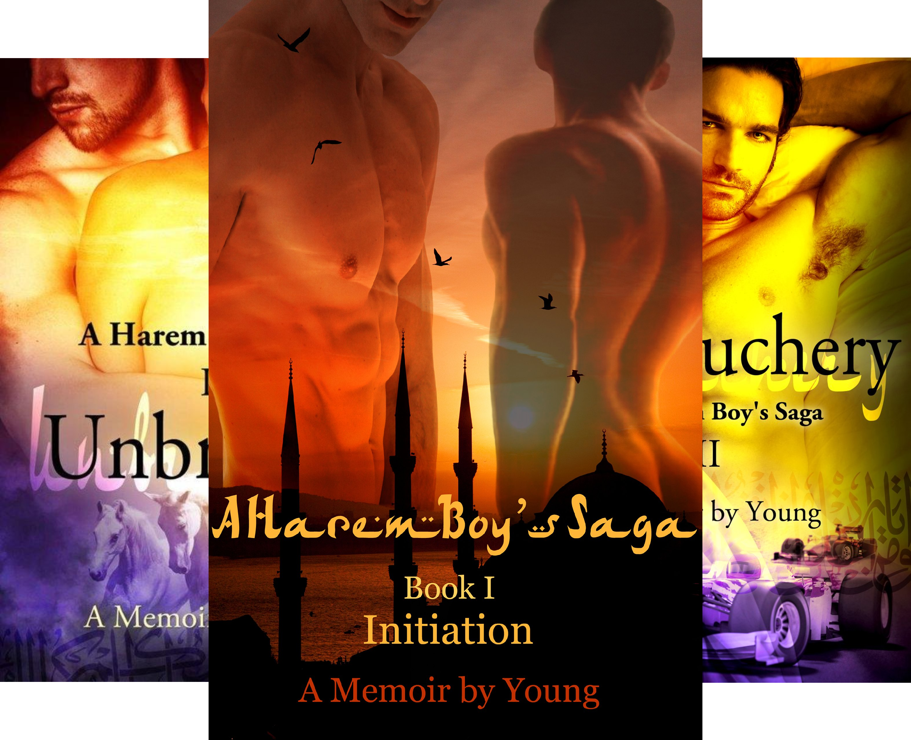 A Harem Boy's Saga (4 Book Series)
