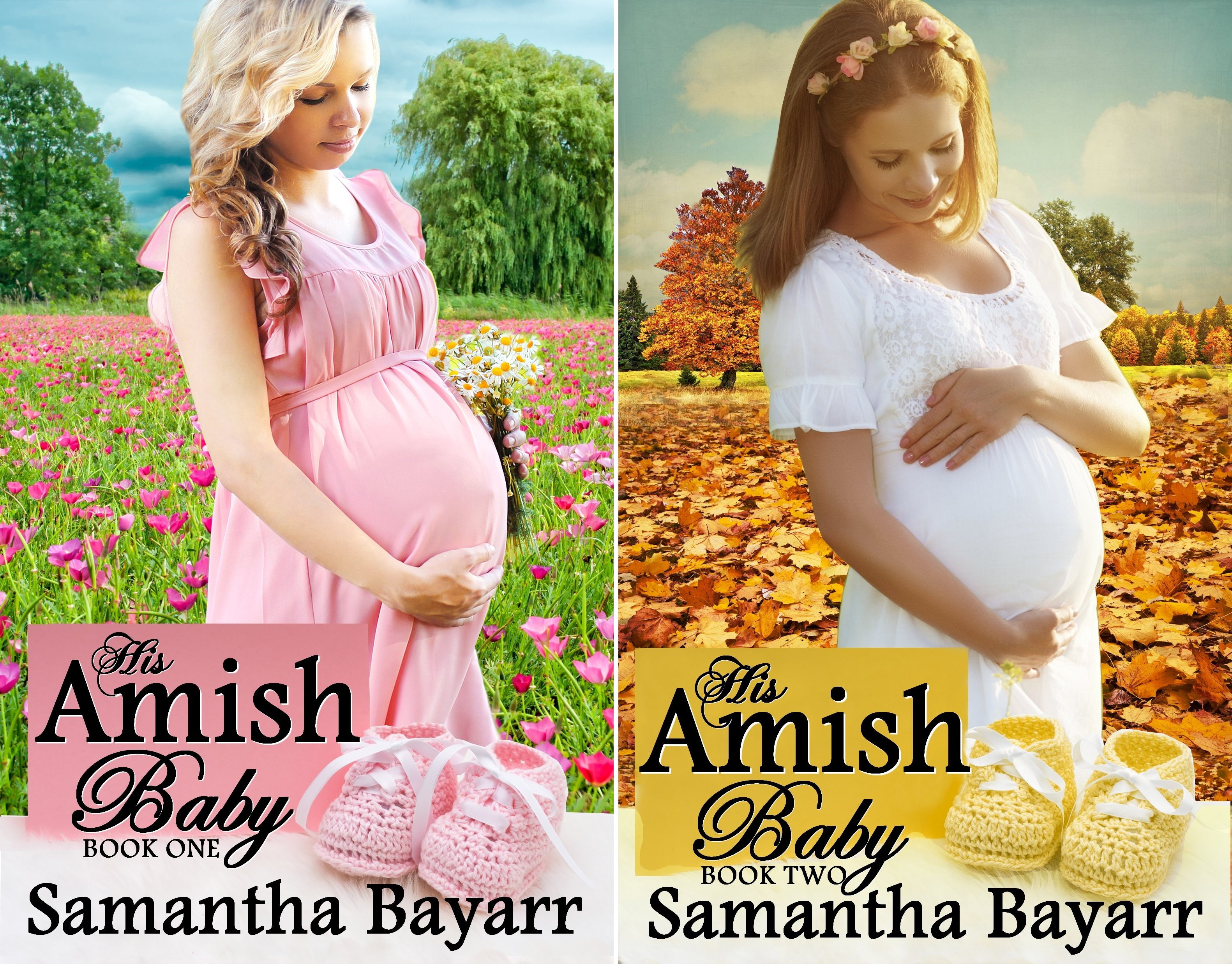 His Amish Baby (2 Book Series)