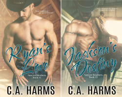 Sawyer Brothers (2 Book Series) by  C.A. Harms