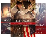Veterans Affairs (5 Book Series)