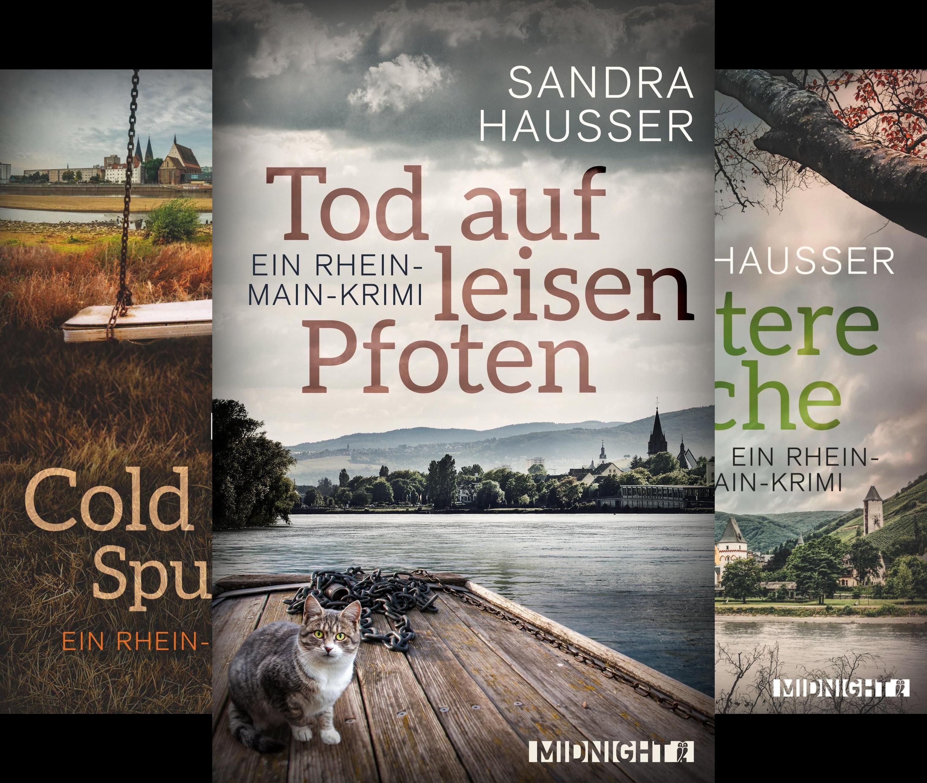 Ein-Rhein-Main-Krimi (Reihe in 3 Bänden)