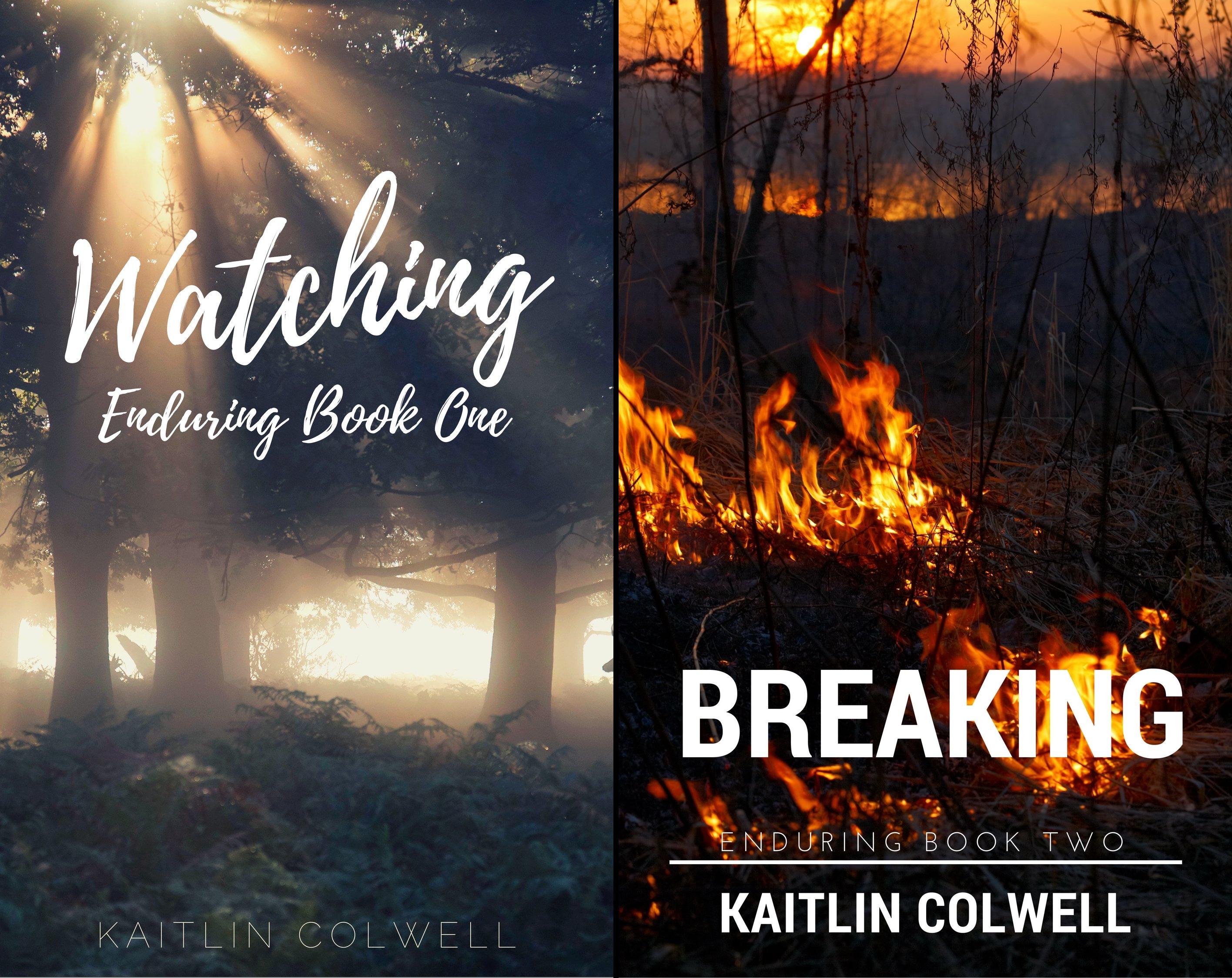 Enduring (2 Book Series)