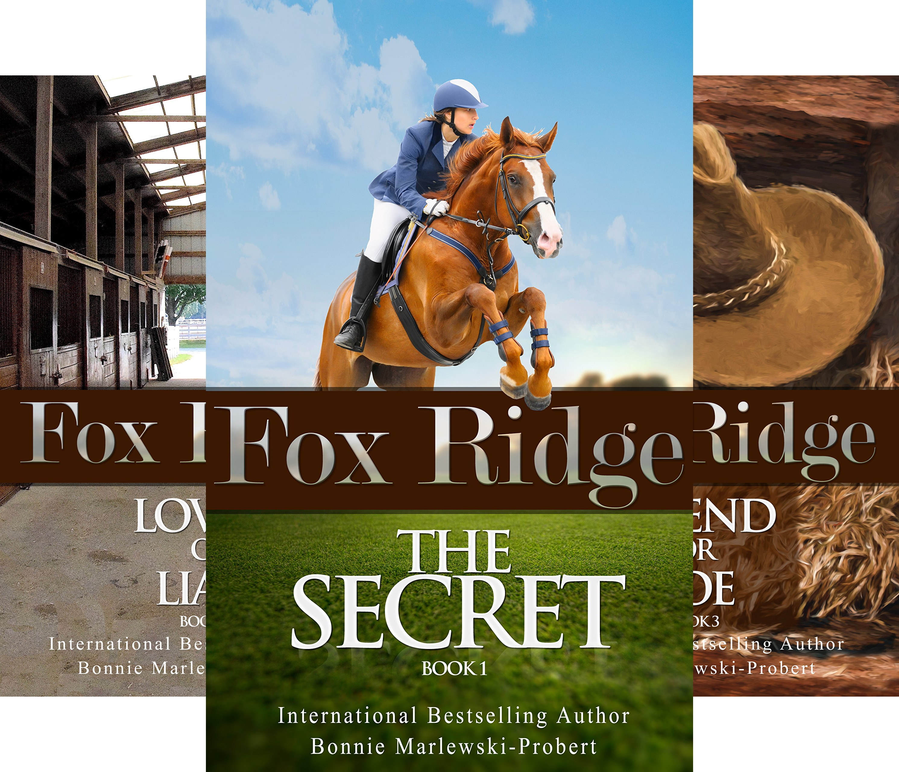 Fox Ridge (5 Book Series)