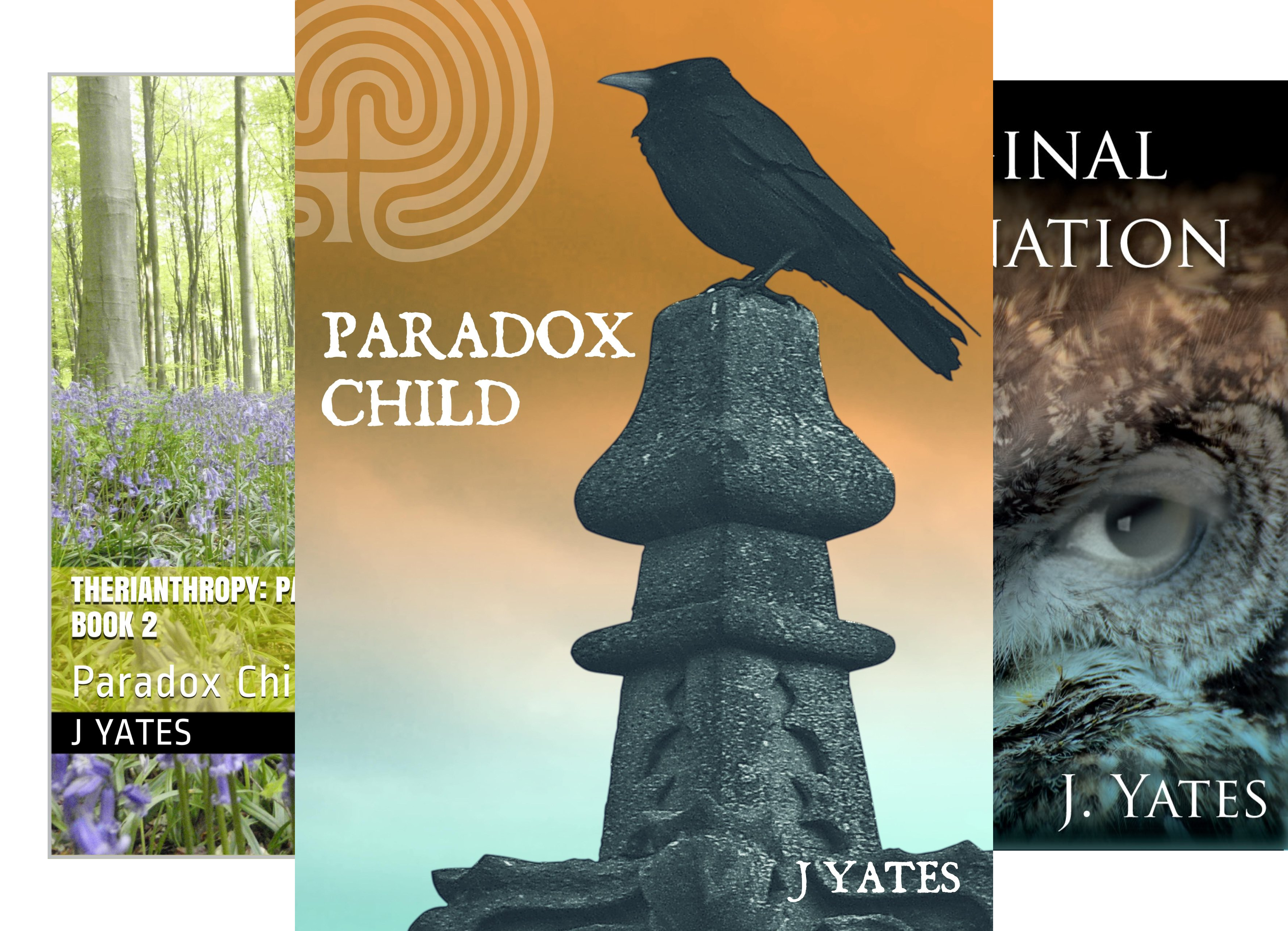Paradox child (3 Book Series)