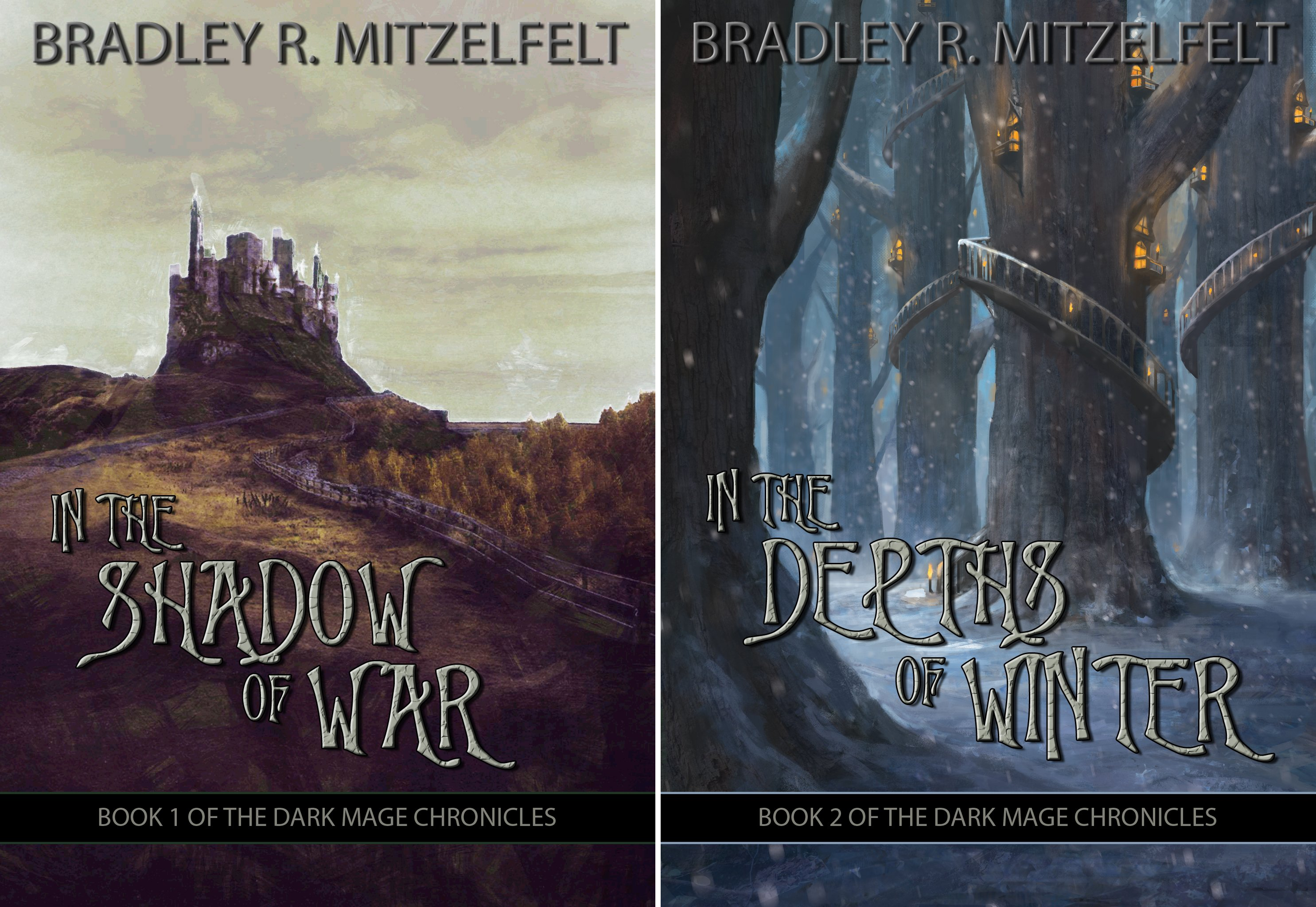 The Dark Mage Chronicles (2 Book Series)
