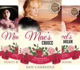 img - for Valentine Mail Order Bride (7 Book Series) book / textbook / text book