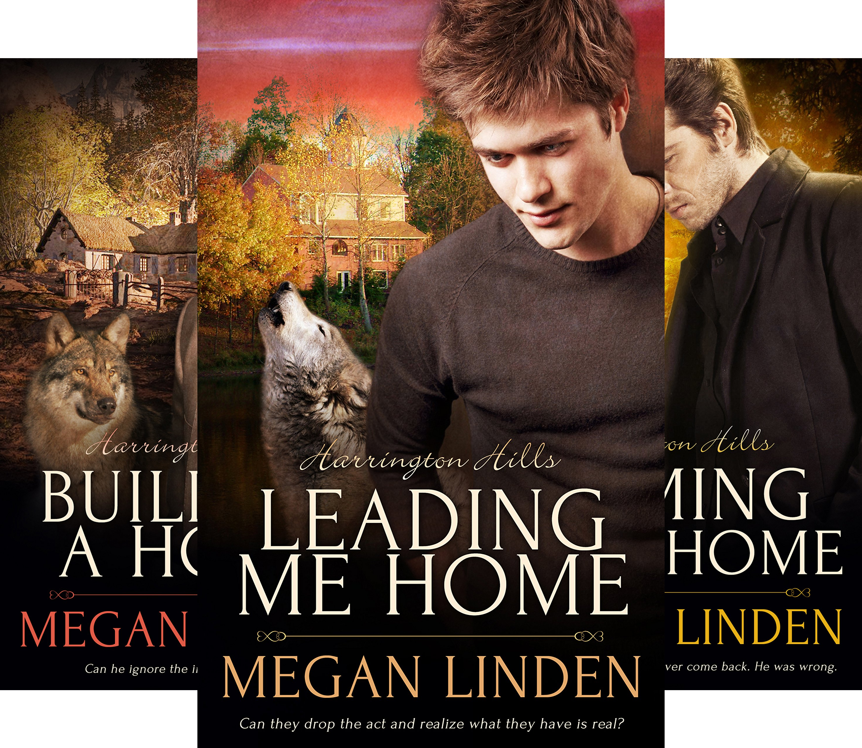 Harrington Hills (4 Book Series)