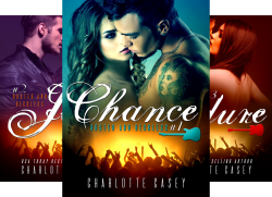 Rusted and Reckless (4 Book Series) by  Charlotte Casey Charlotte  Casey