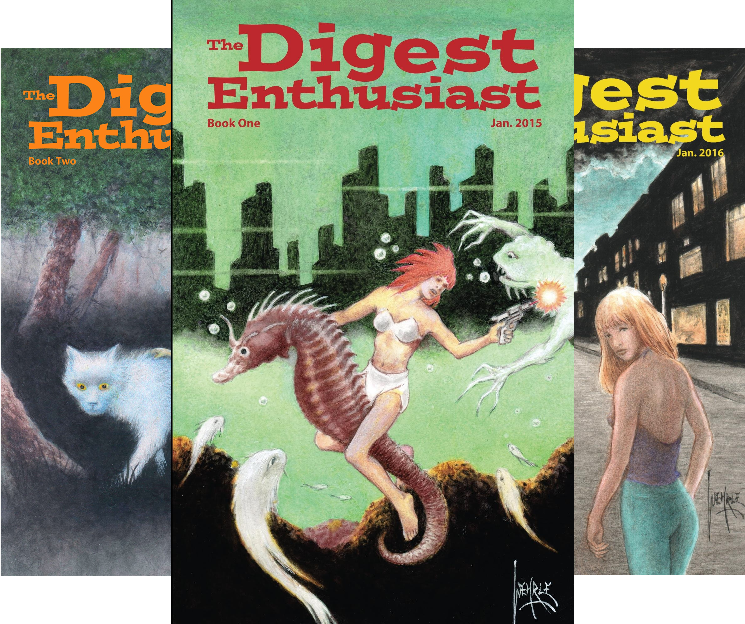 The Digest Enthusiast (7 Book Series)