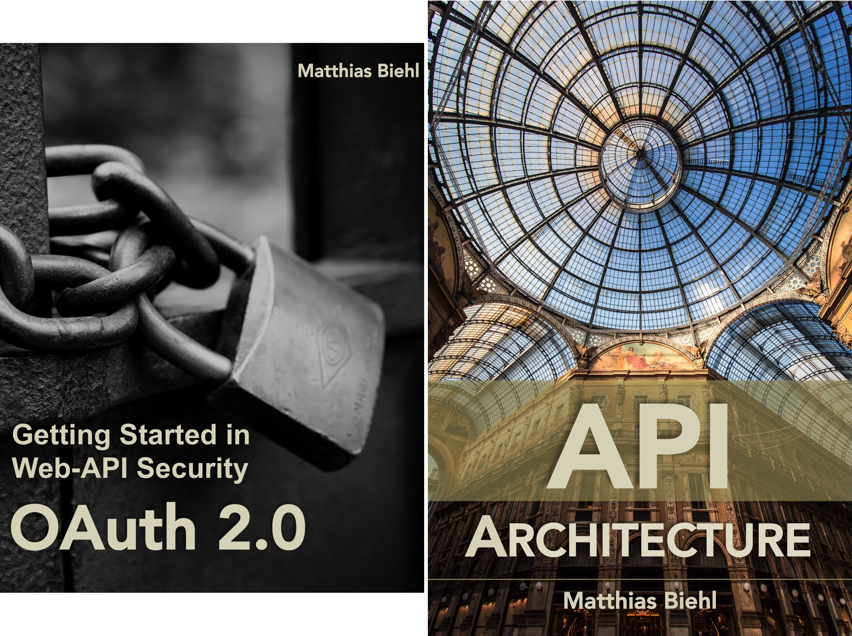 API-University Series (2 Book Series)