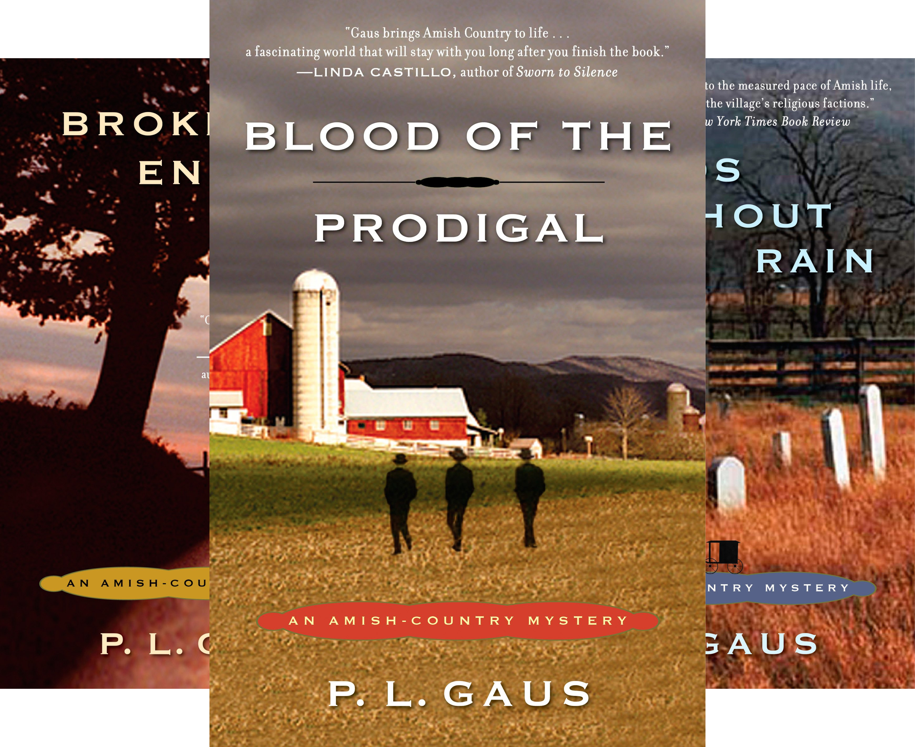 An Amish-Country Mystery (9 Book Series)