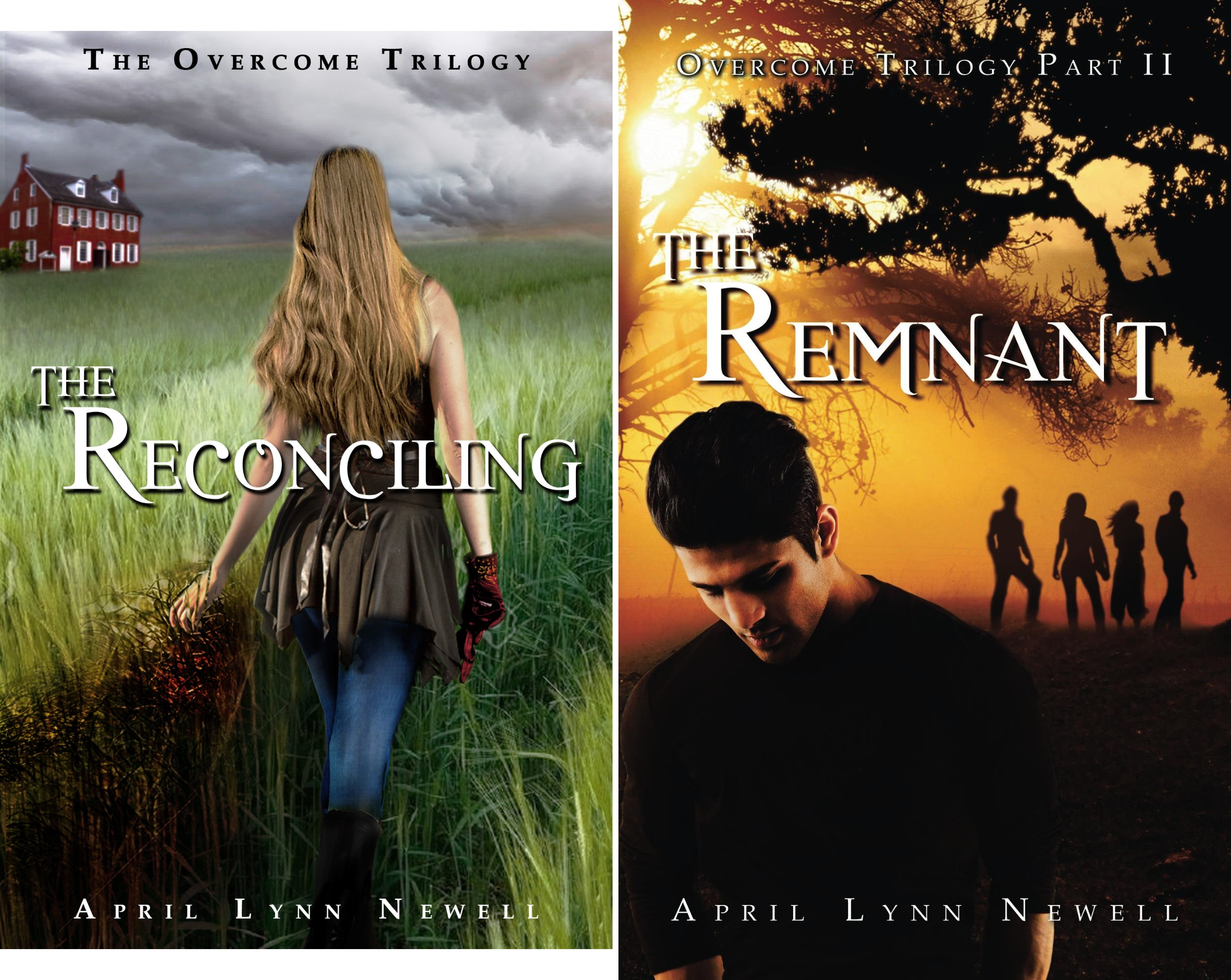 Overcome Trilogy (2 Book Series)
