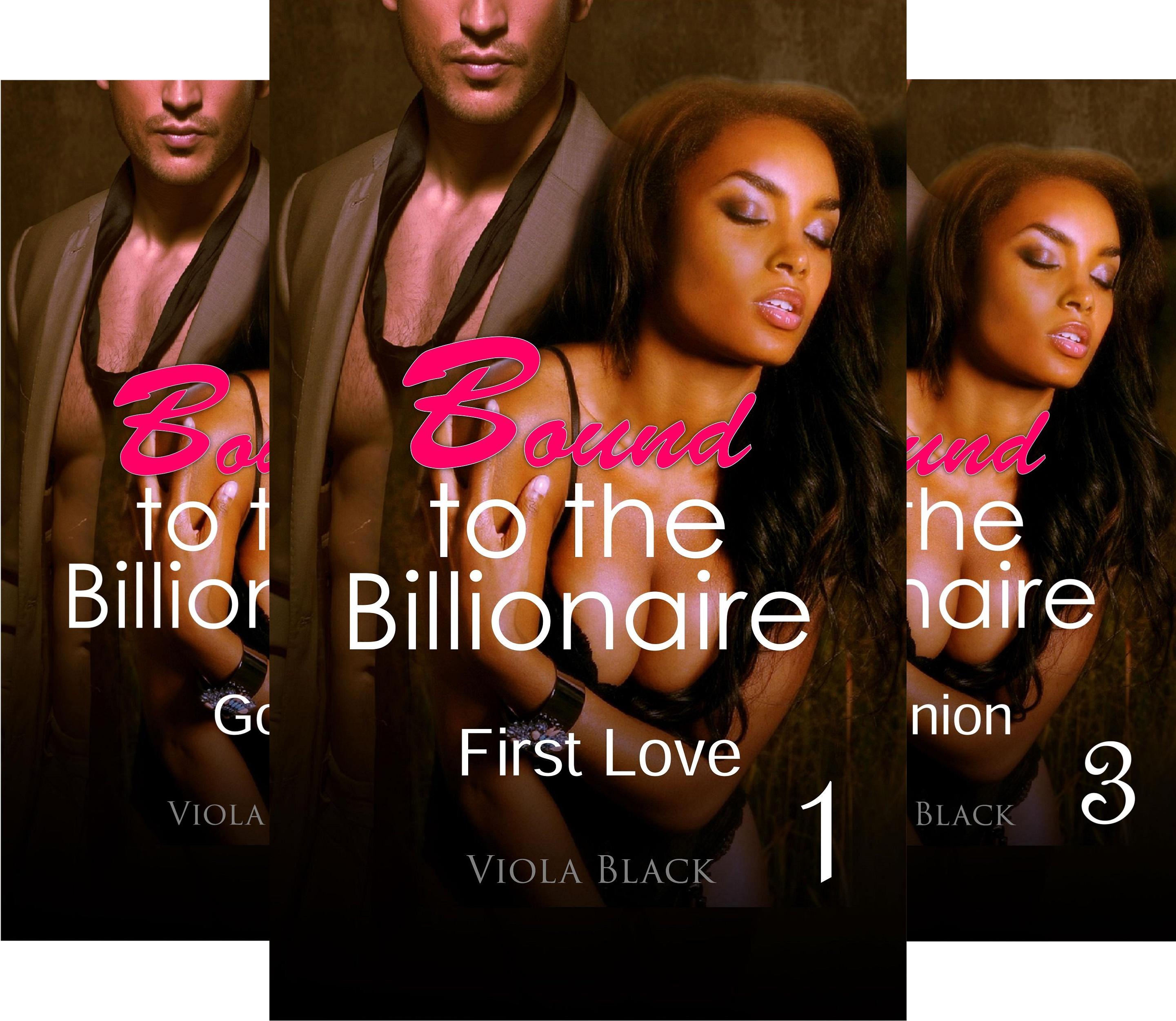 Books : Bound to the Billionaire (3 Book Series)