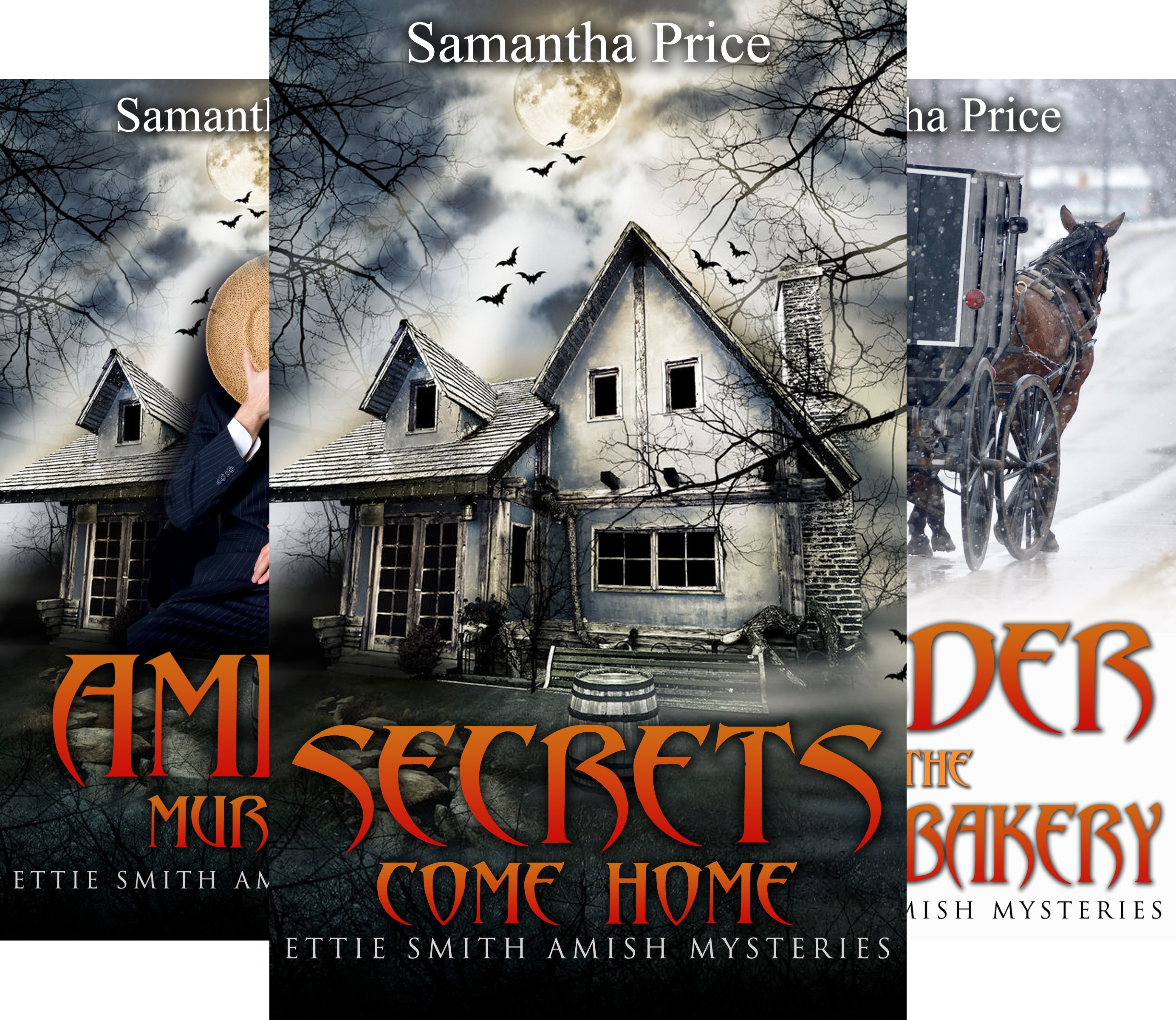 Ettie Smith Amish Mysteries (12 Book Series)
