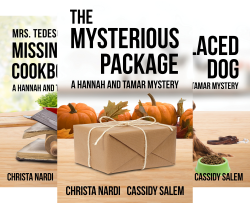 A Hannah and Tamar Mystery (3 Book Series) by  Christa Nardi Cassidy Salem