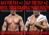 img - for Gay for Pay (2 Book Series) book / textbook / text book