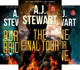 John Flynn Thrillers (3 Book Series)