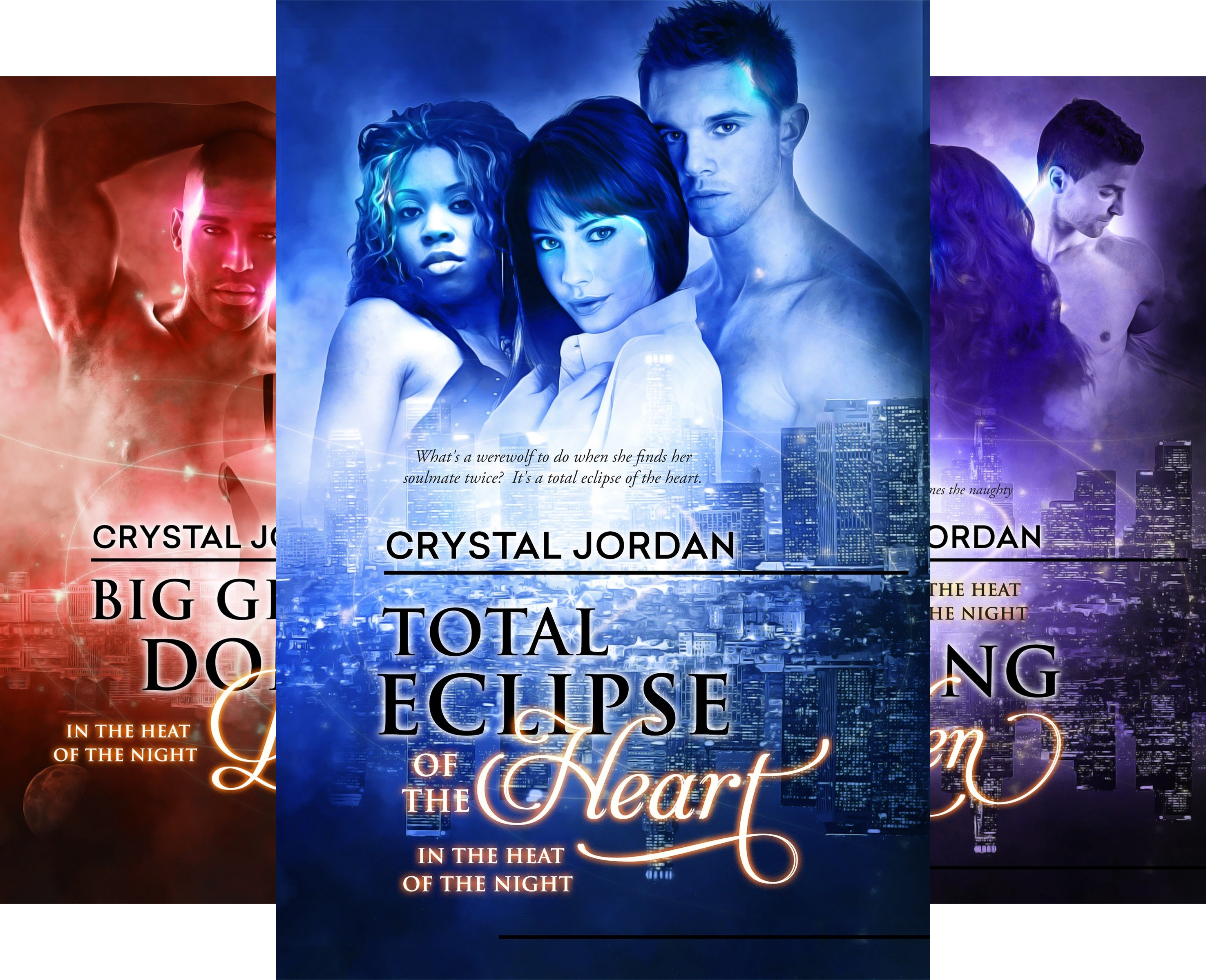 In the Heat of the Night (4 Book Series)