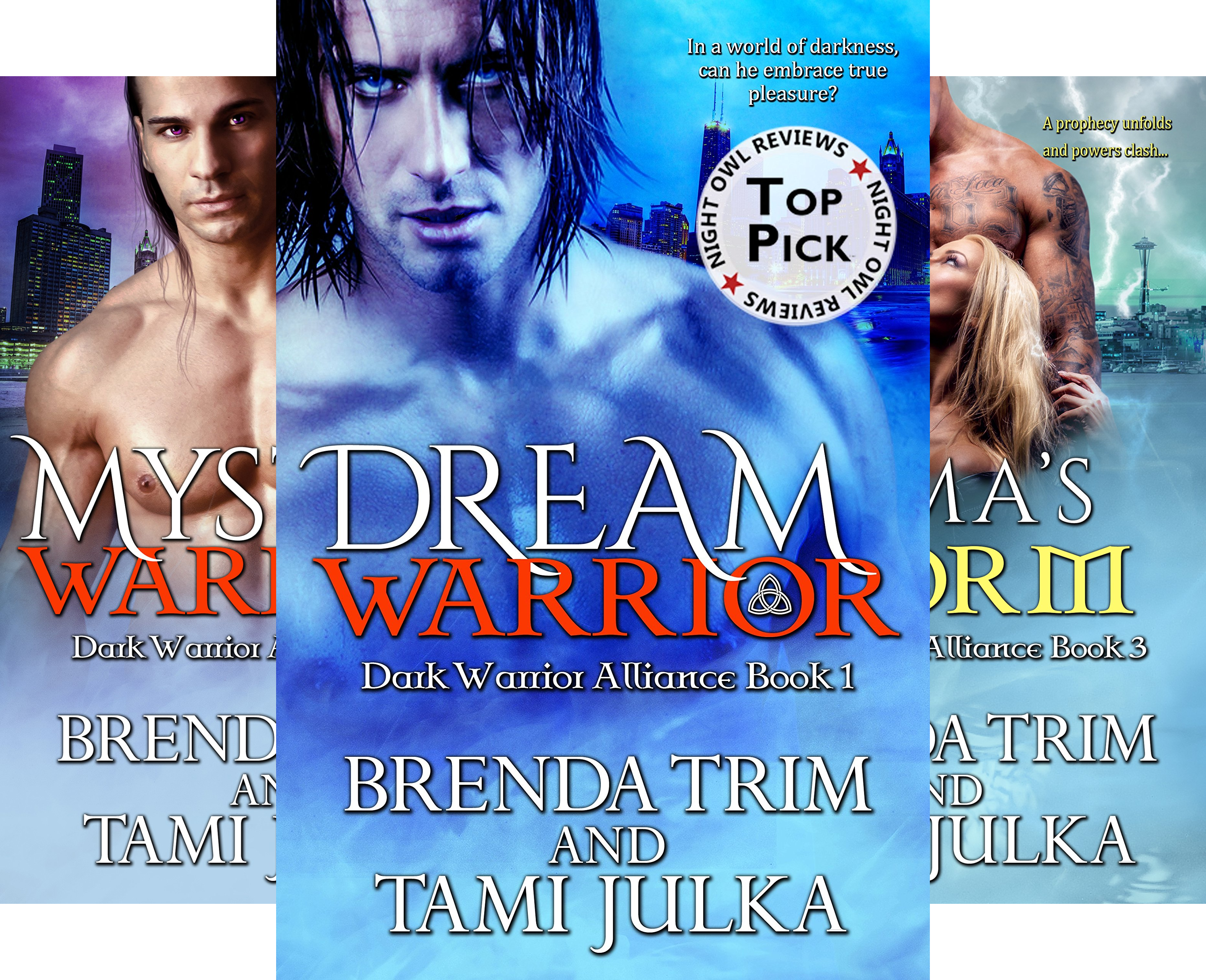 Dark Warrior Alliance (13 Book Series)