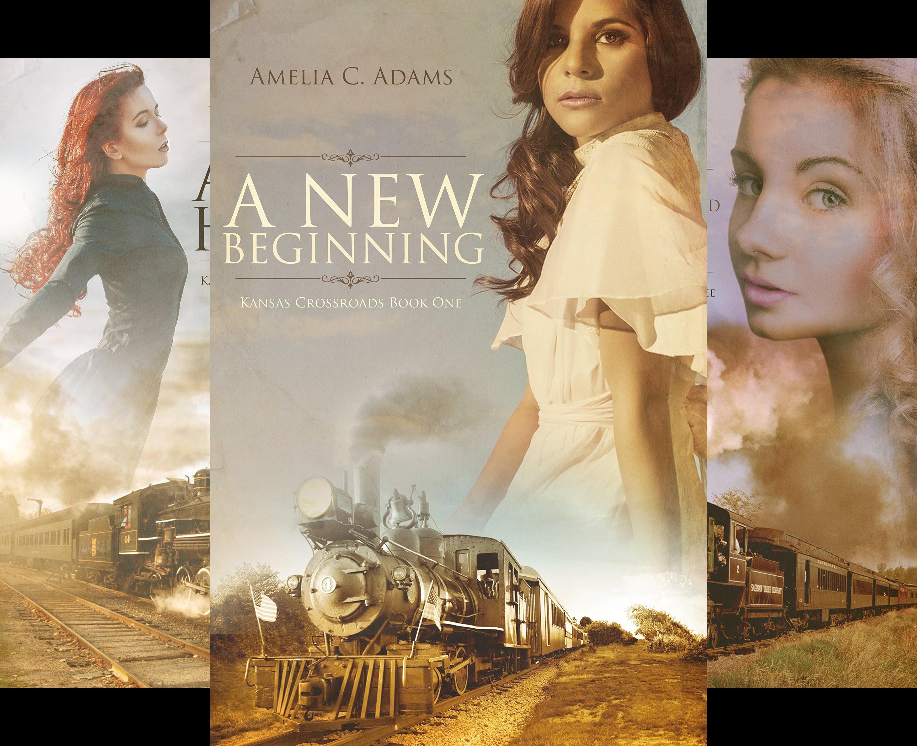Kansas Crossroads (14 Book Series)