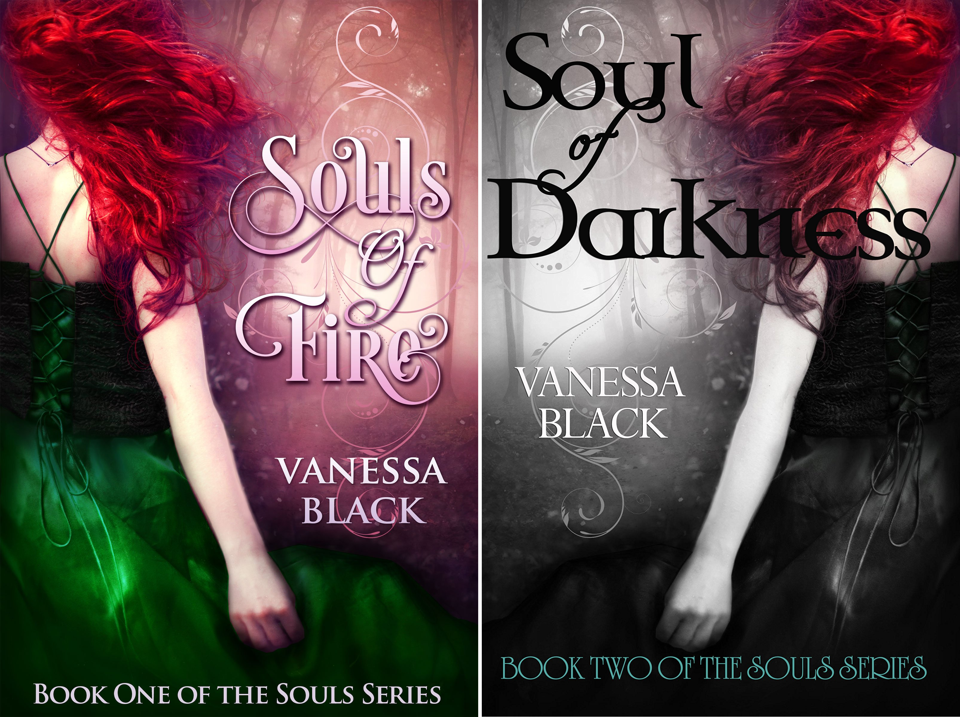 The Souls Series (2 Book Series)