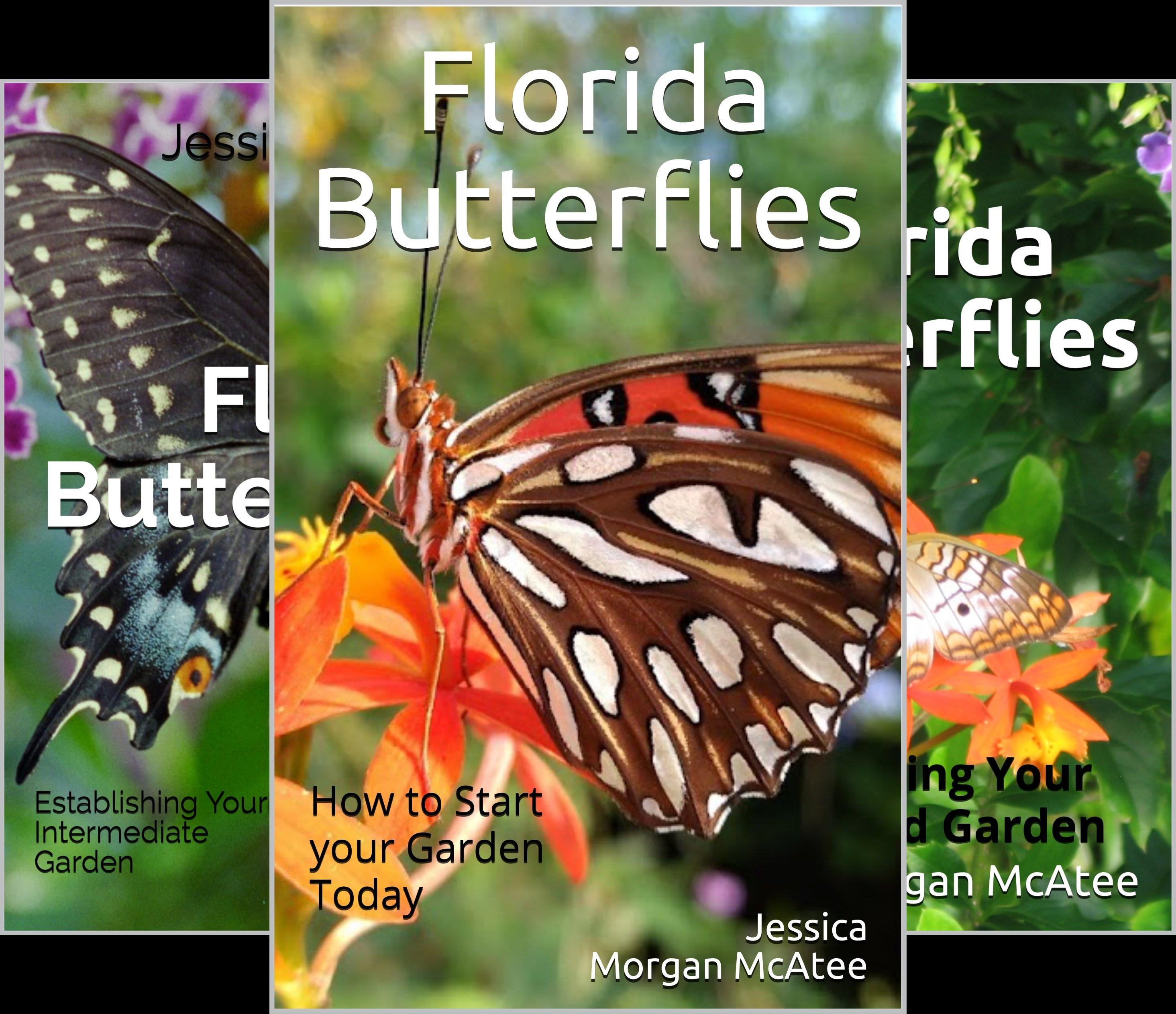 Florida Butterflies (3 Book Series)