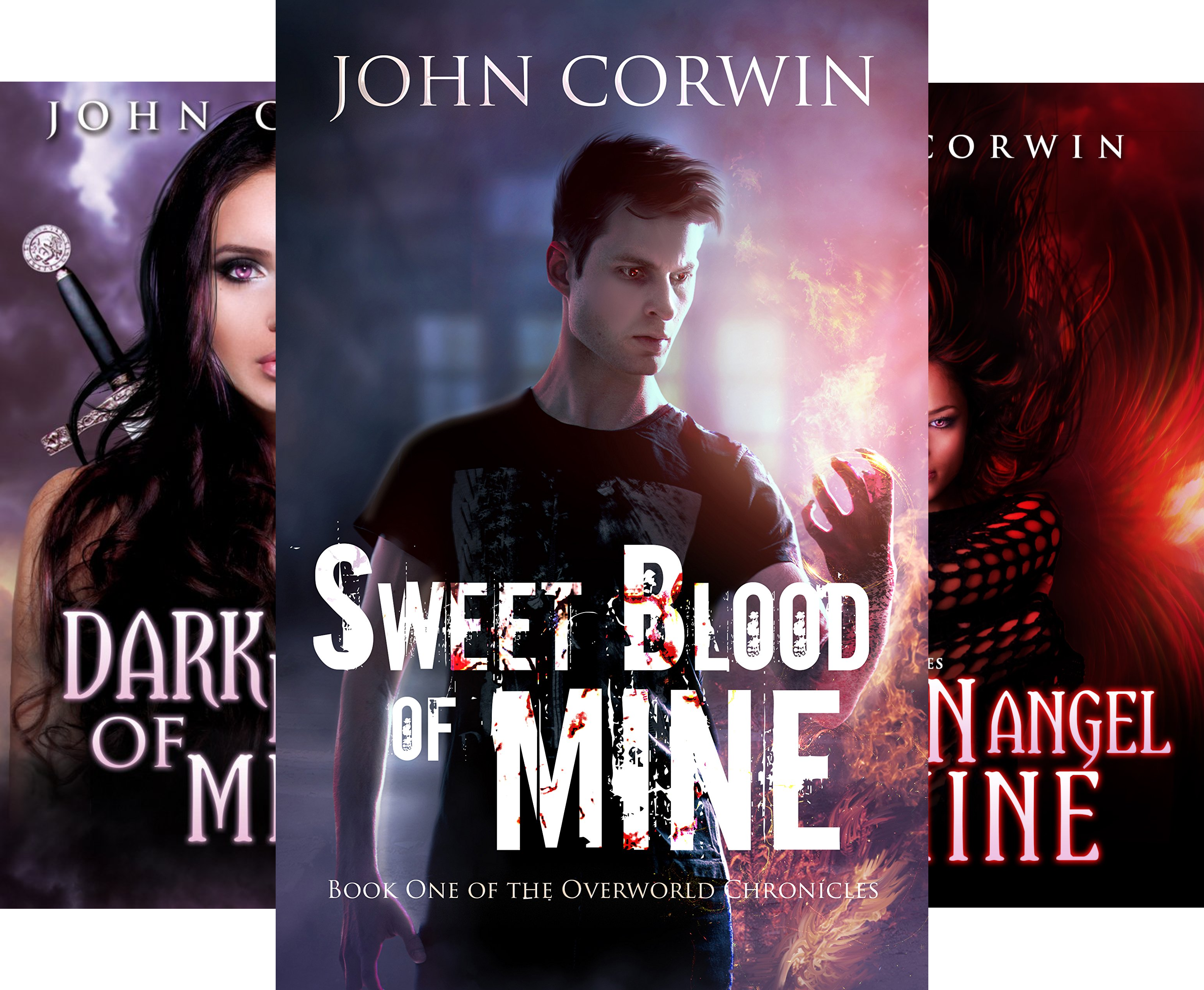 Overworld Chronicles (16 Book Series)