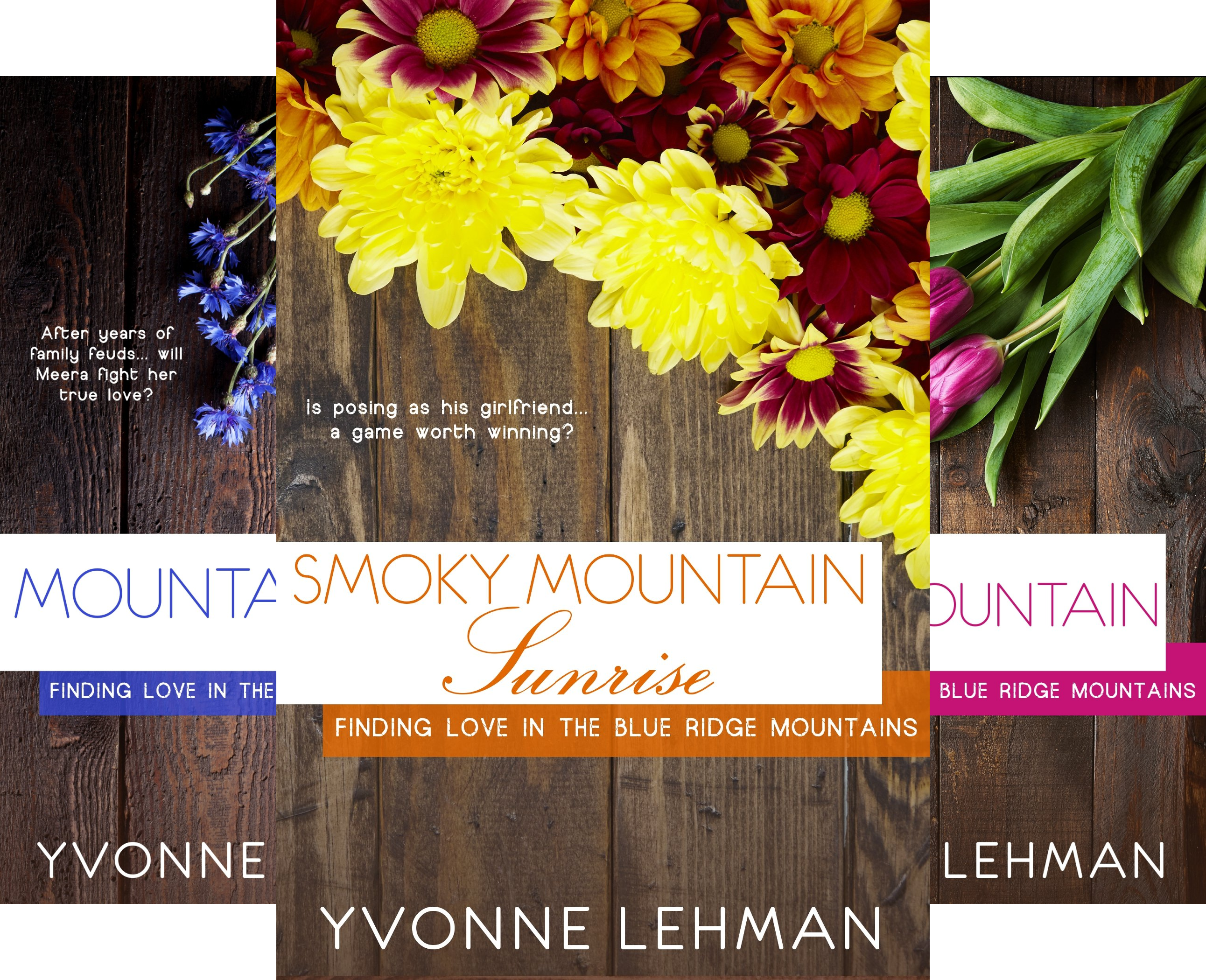 Finding Love in the Blue Ridge Mountains (4 Book Series)