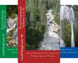 img - for Renewal Journals (4 Book Series) book / textbook / text book