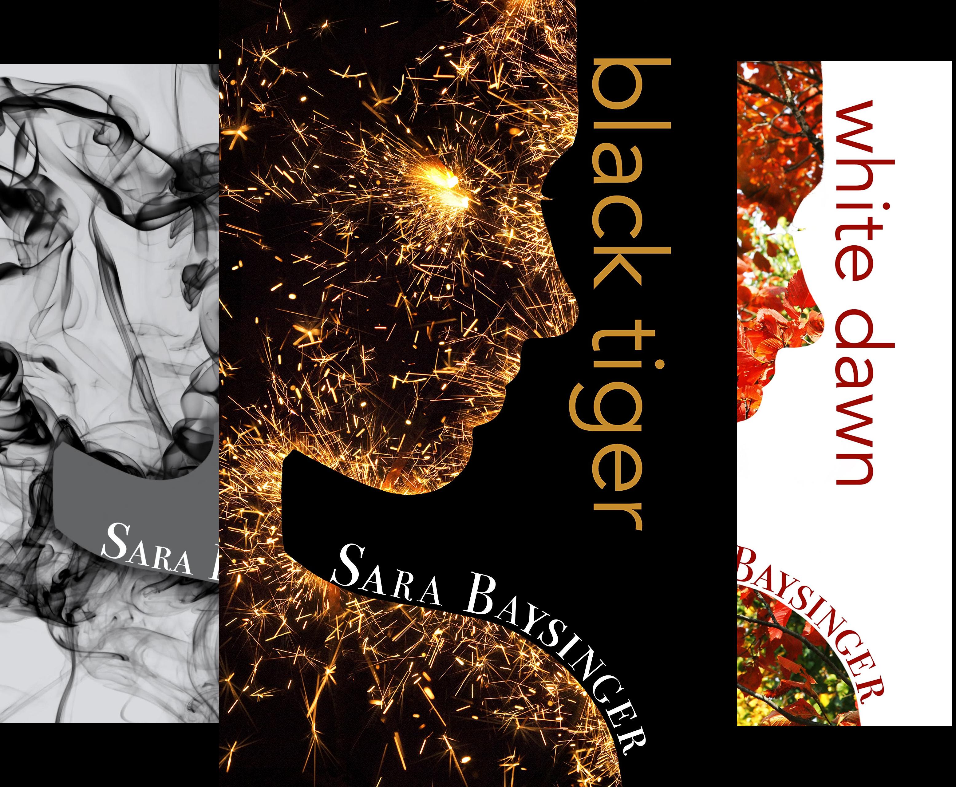 Black Tiger Series (3 Book Series)