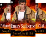 Some Like It Hot (3 Book Series)