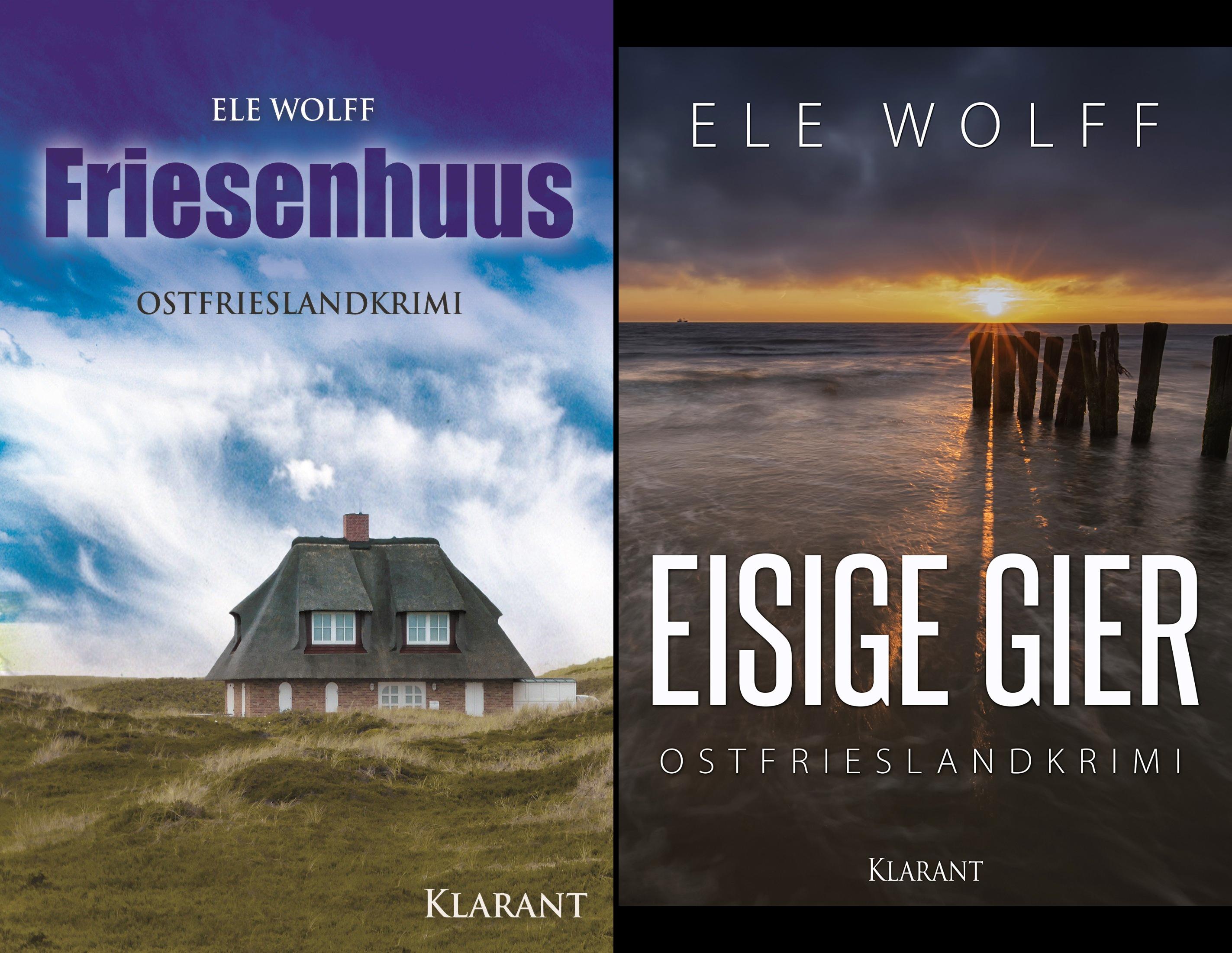 Janneke Hoogestraat ermittelt (Reihe in 2 Bänden)