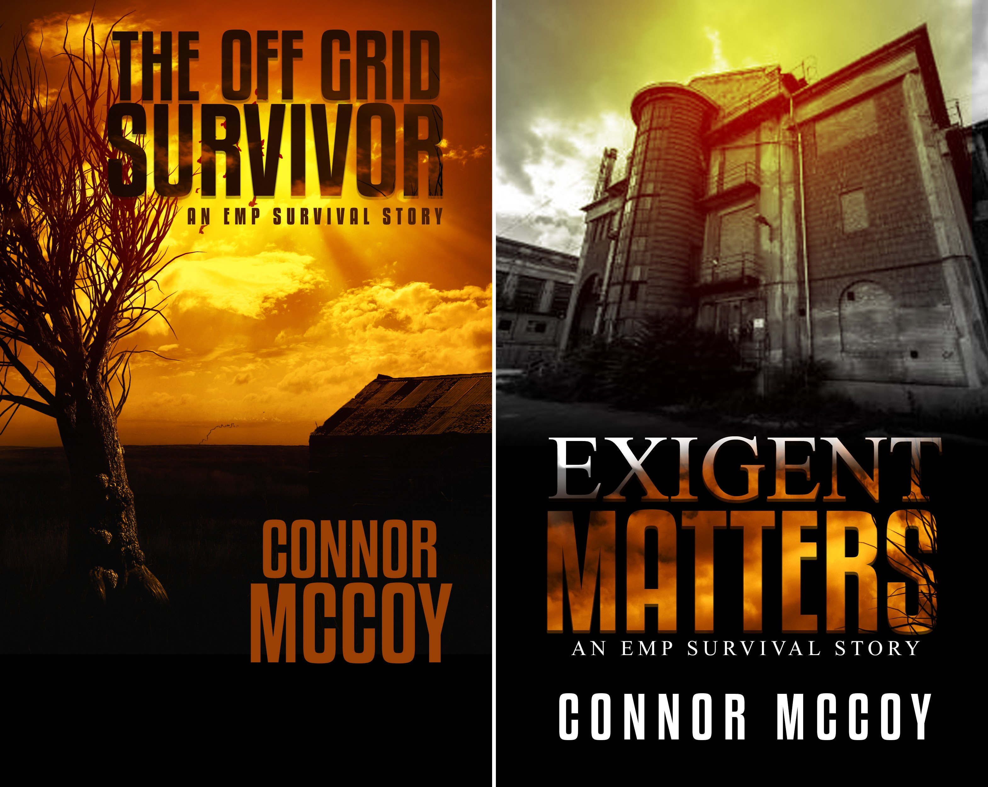 The Off Grid Survivor (2 Book Series)