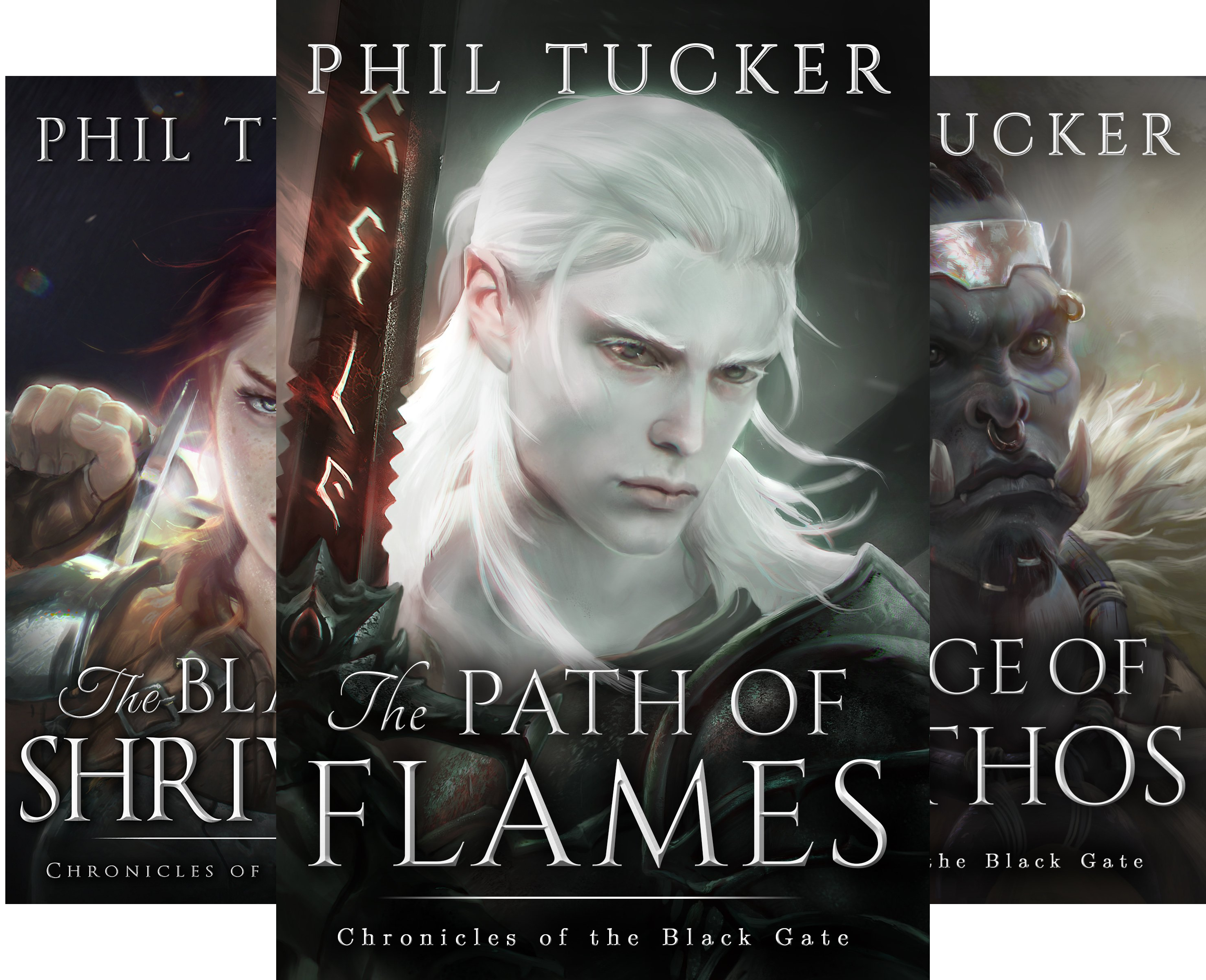 Chronicles of the Black Gate (4 Book Series)