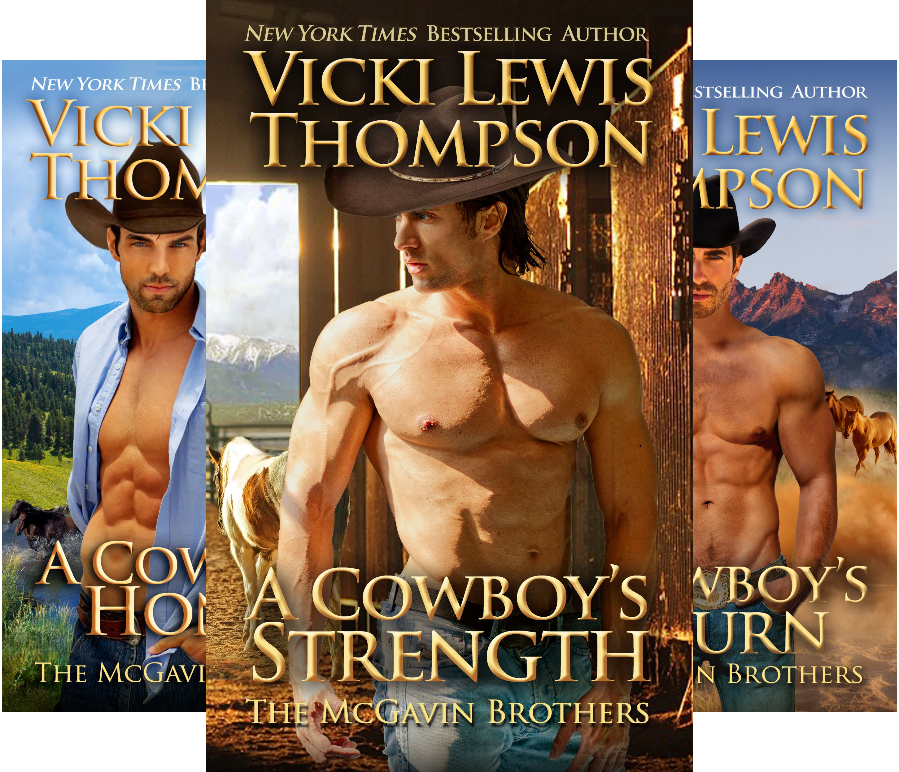 The McGavin Brothers (4 Book Series)