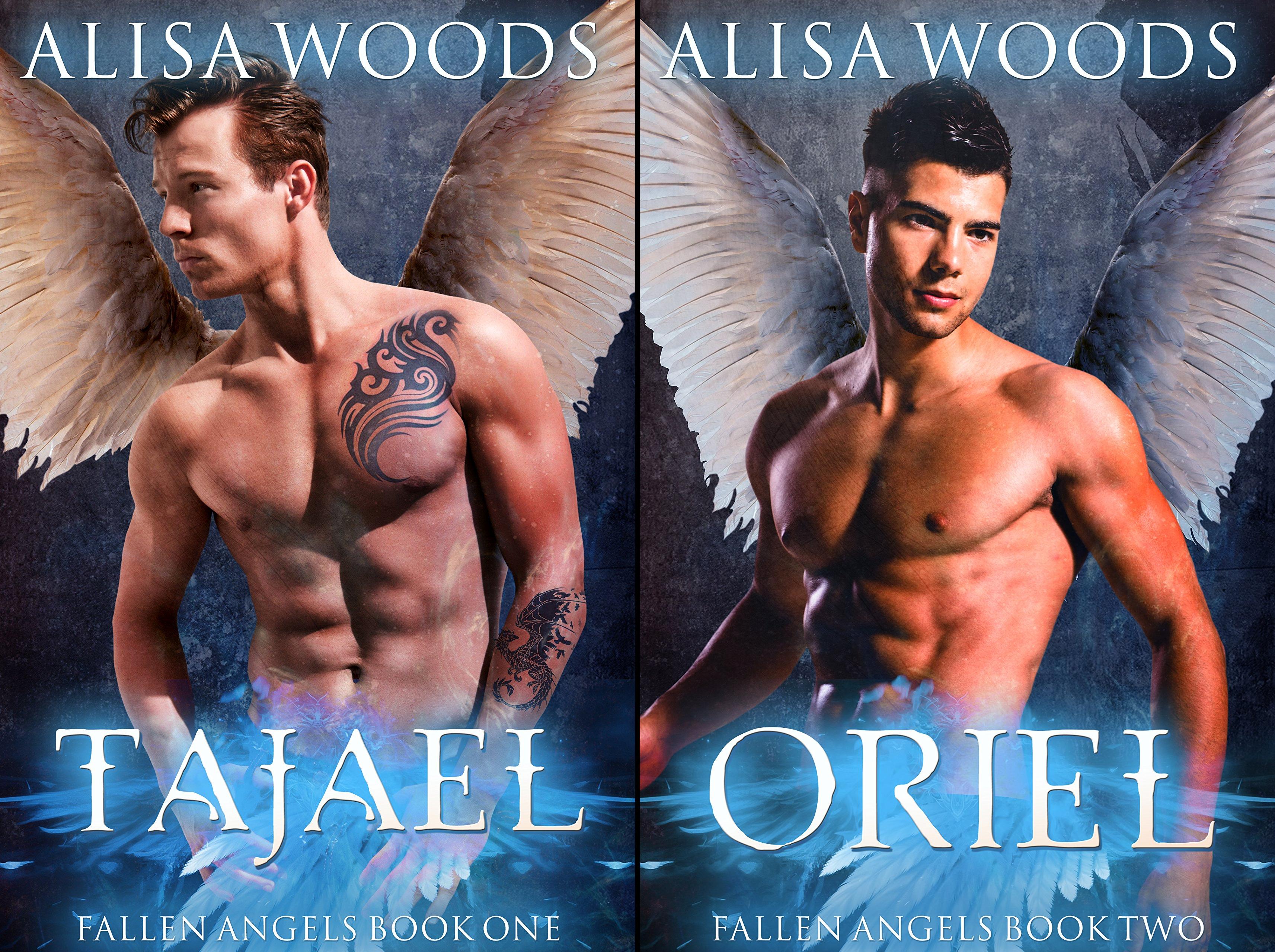 Fallen Angels (2 Book Series)