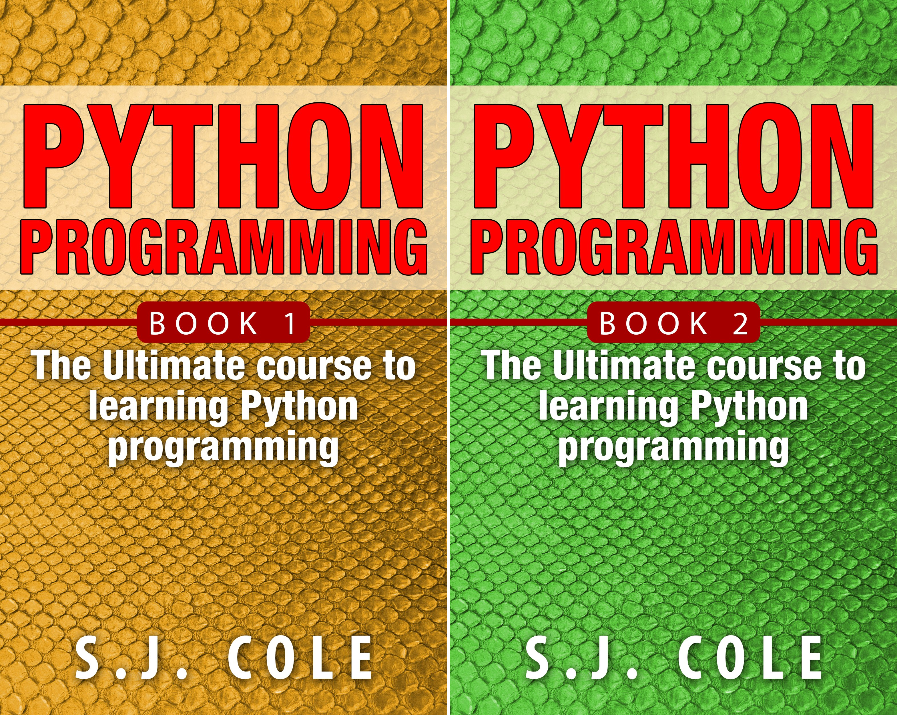 Python Programming for Complete Beginners (2 Book Series)