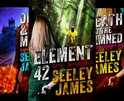 Sabel Security (4 Book Series) by  Seeley James