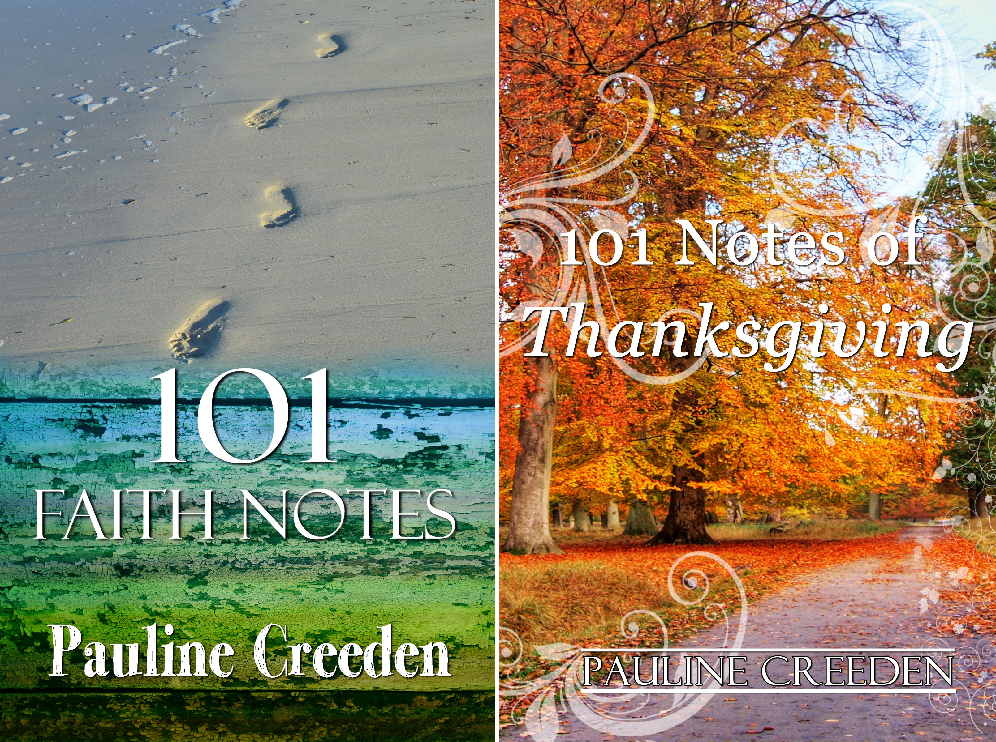 101 God Notes (2 Book Series)