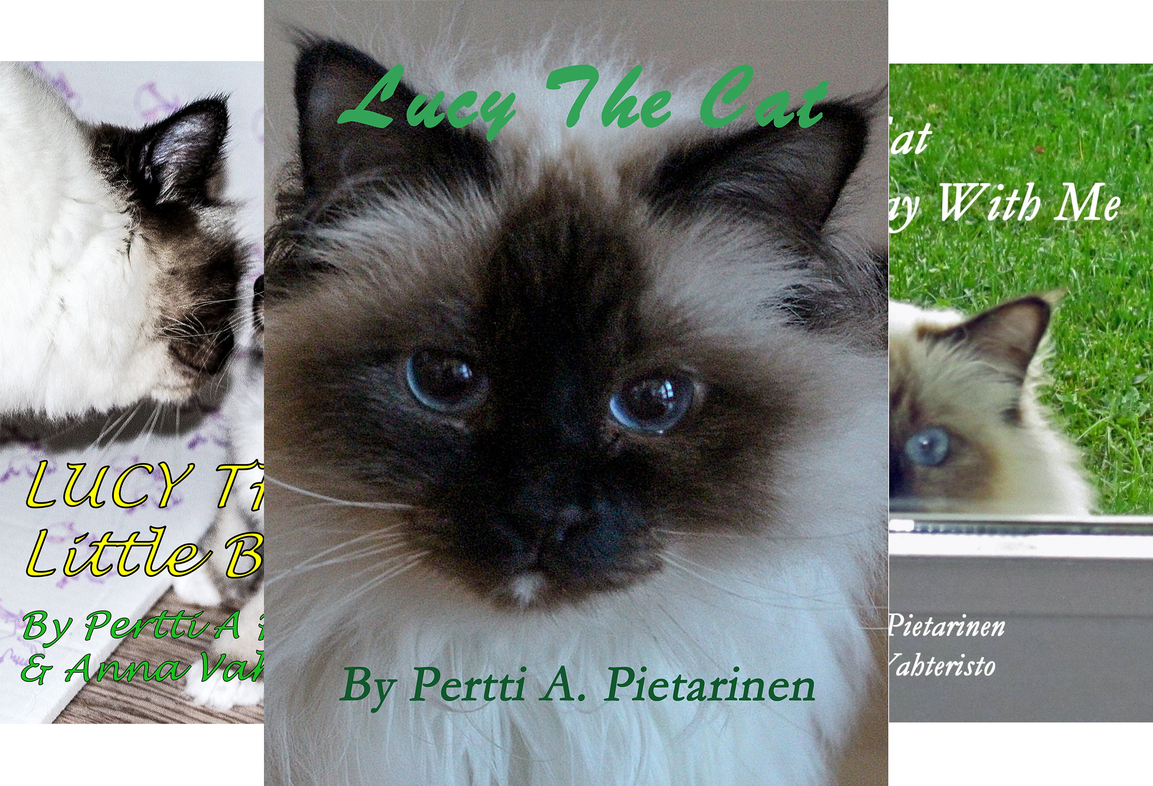 Lucy The Cat (8 Book Series)