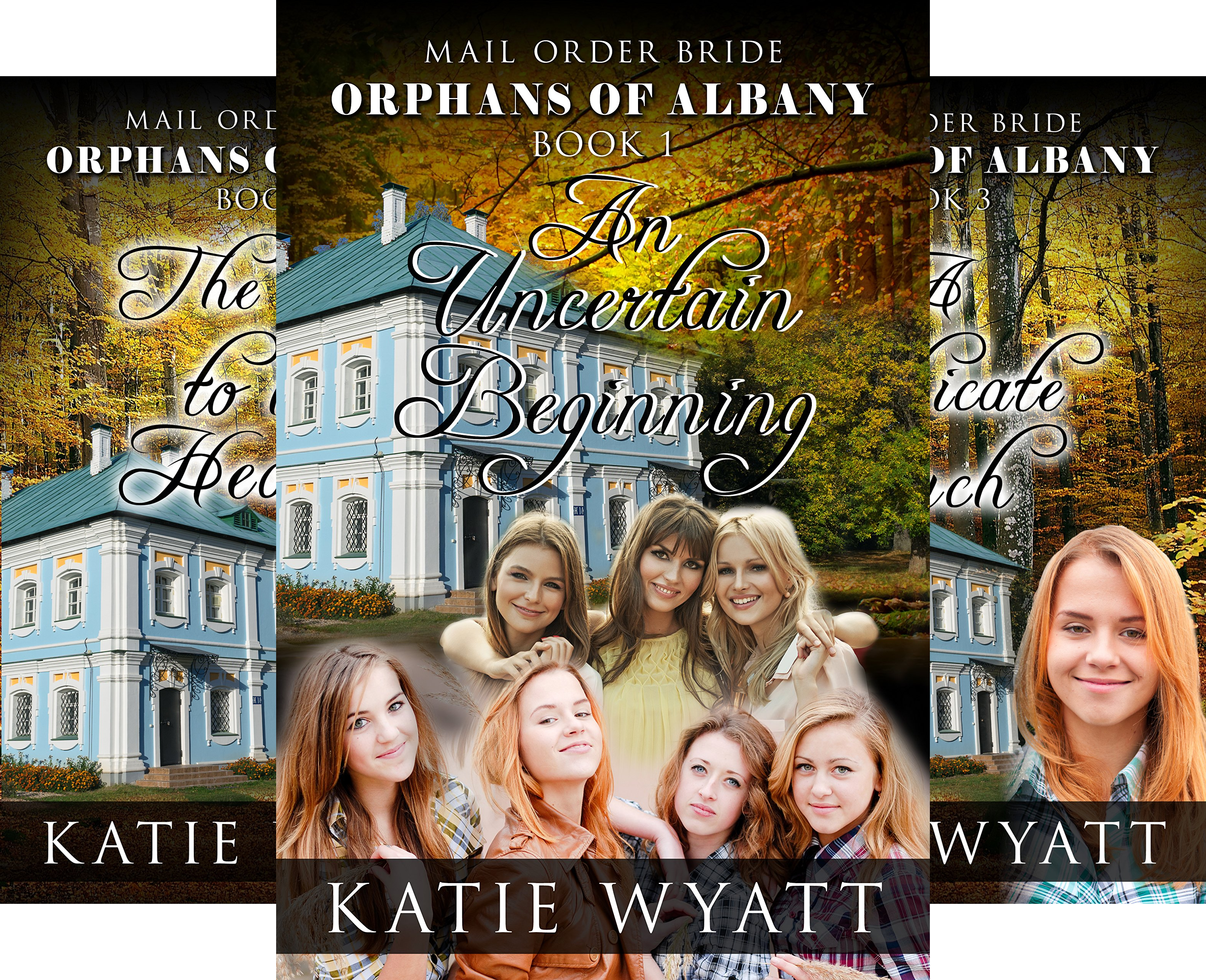 Orphans of Albany Series (7 Book Series)